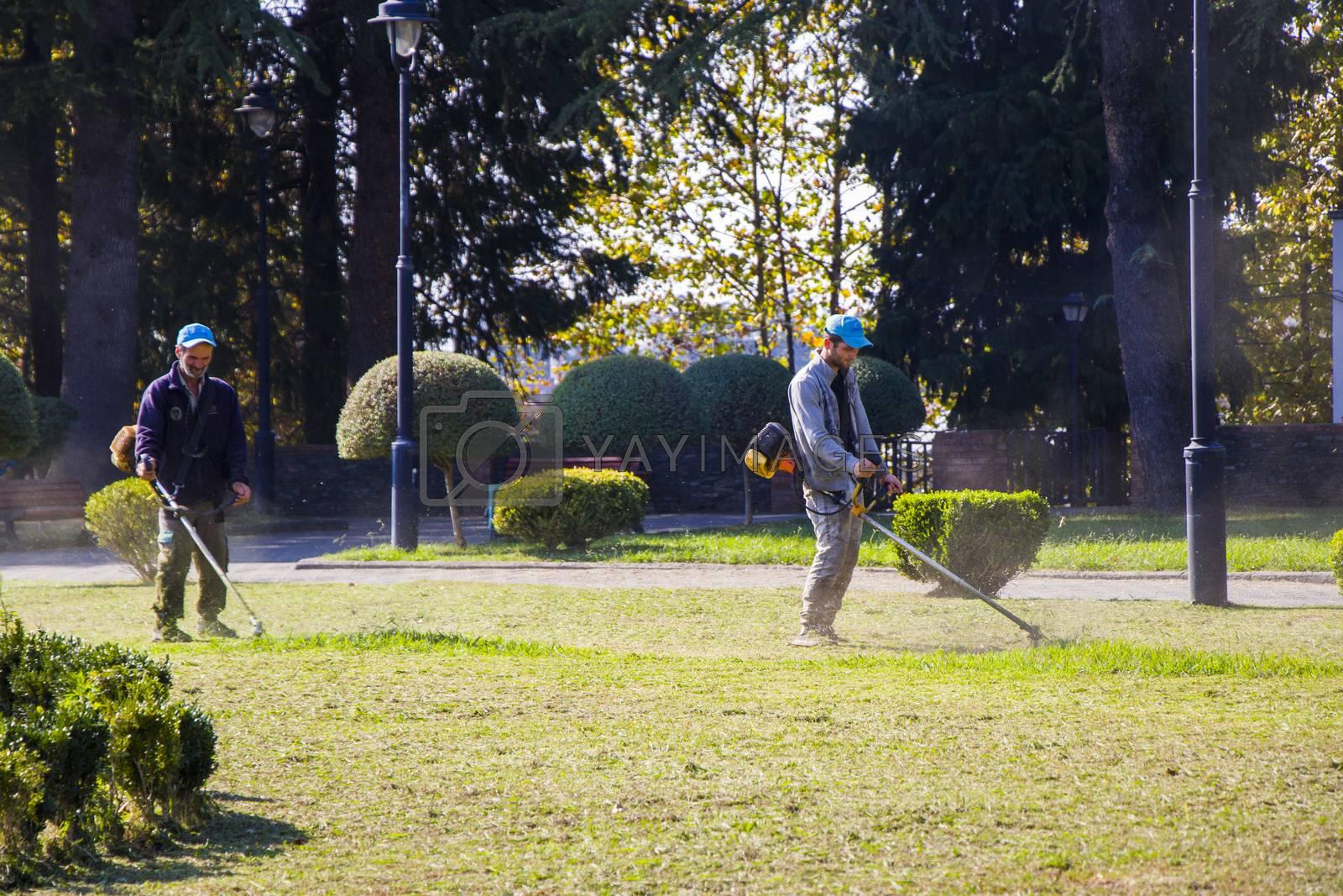 Zugdidi, Georgia - October 12, 2020: Grass cutting process, worker cutting grass with machine in the park