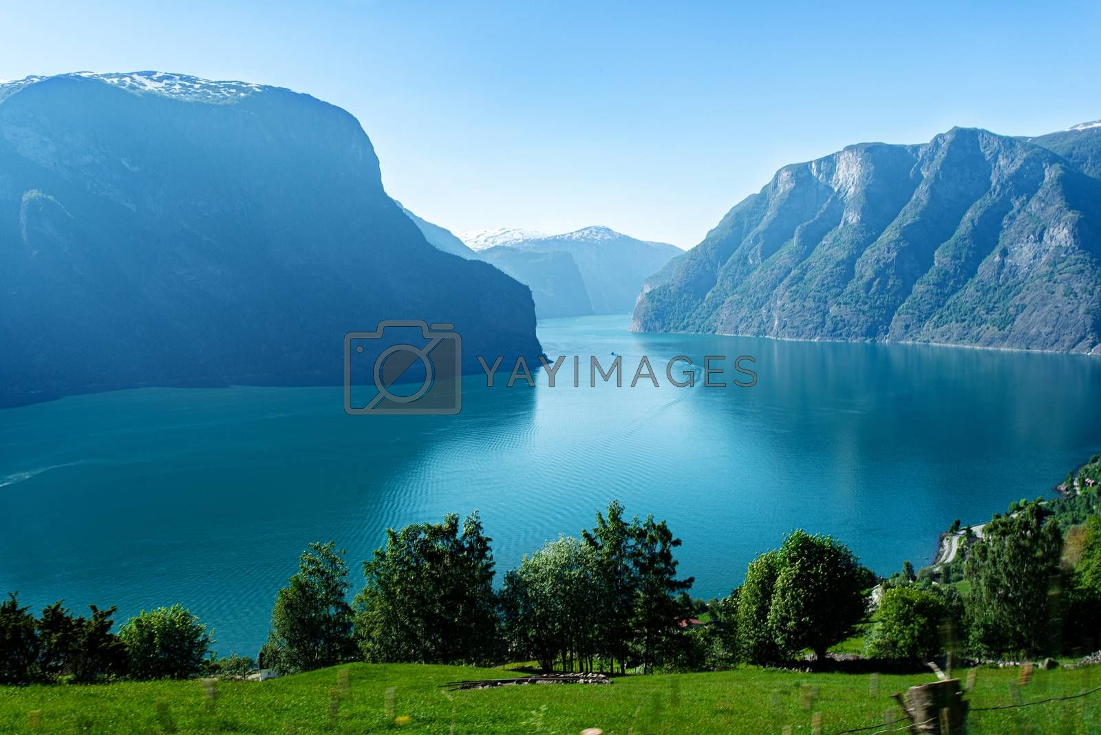 Norway Sognefjord at summer. Sunny day, landscape with mountain, fjord, forest