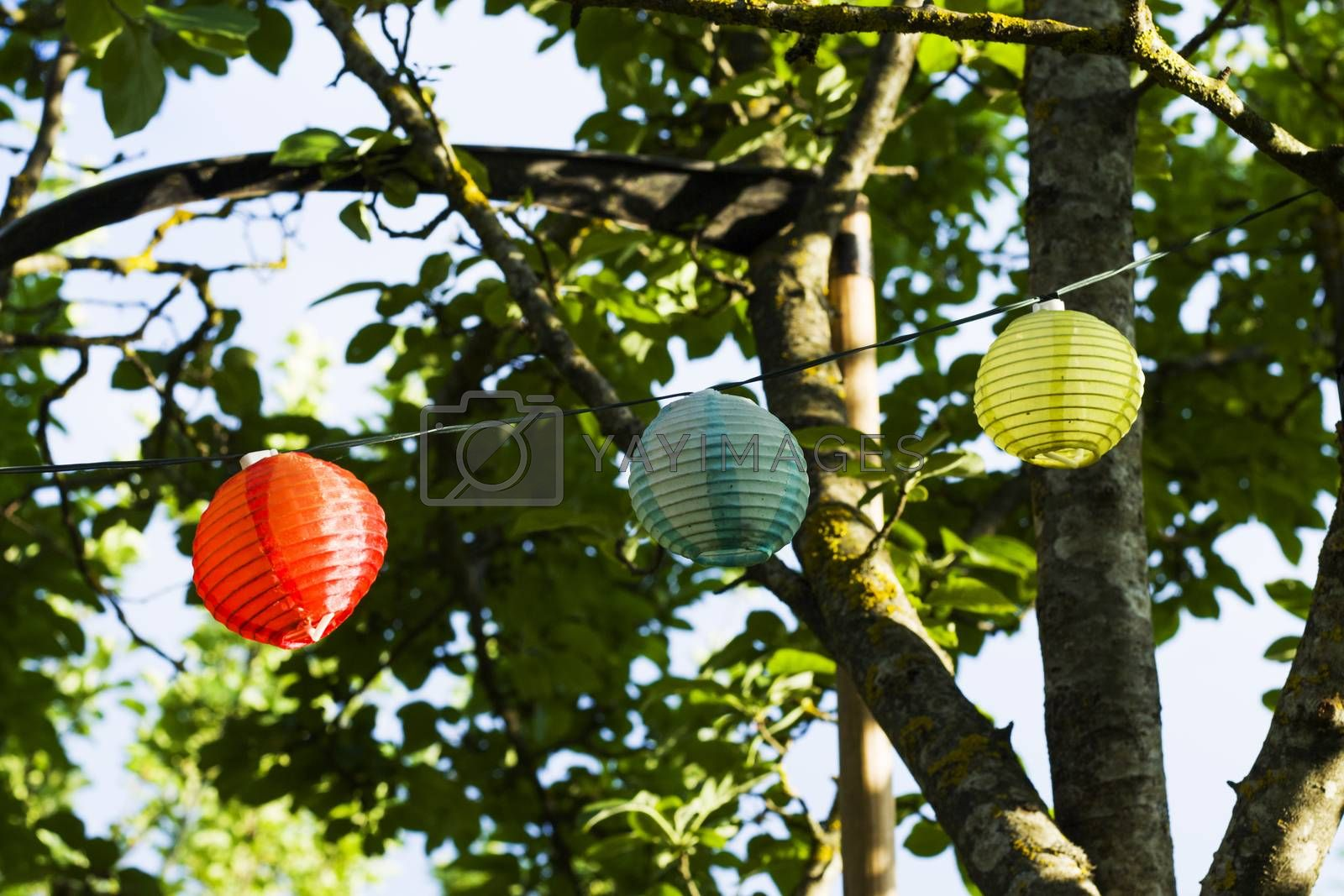 Lantern in the yard on the tree bokeh background, night and warm light, hanging lanterns, natural light, evening time.