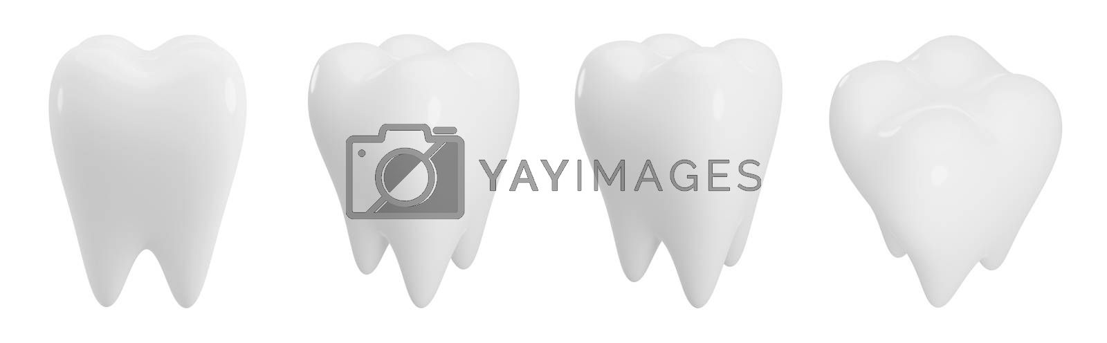 Teeth isolated on white background with copy space 3d render by Myimagine