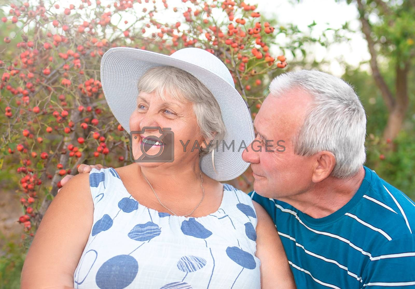 Authentic outdoor shot of aging couple having fun in the garden and blessed with love. During their game man is trying to kiss his partner and she is laughing out loud. Love and family concept.