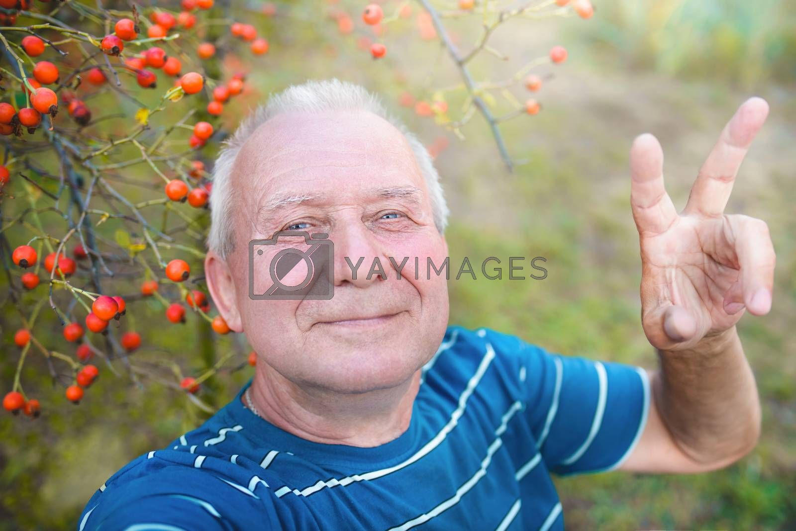 positive retired grandfather, makes selfie with a smartphone in the park. an elderly man walks in nature.