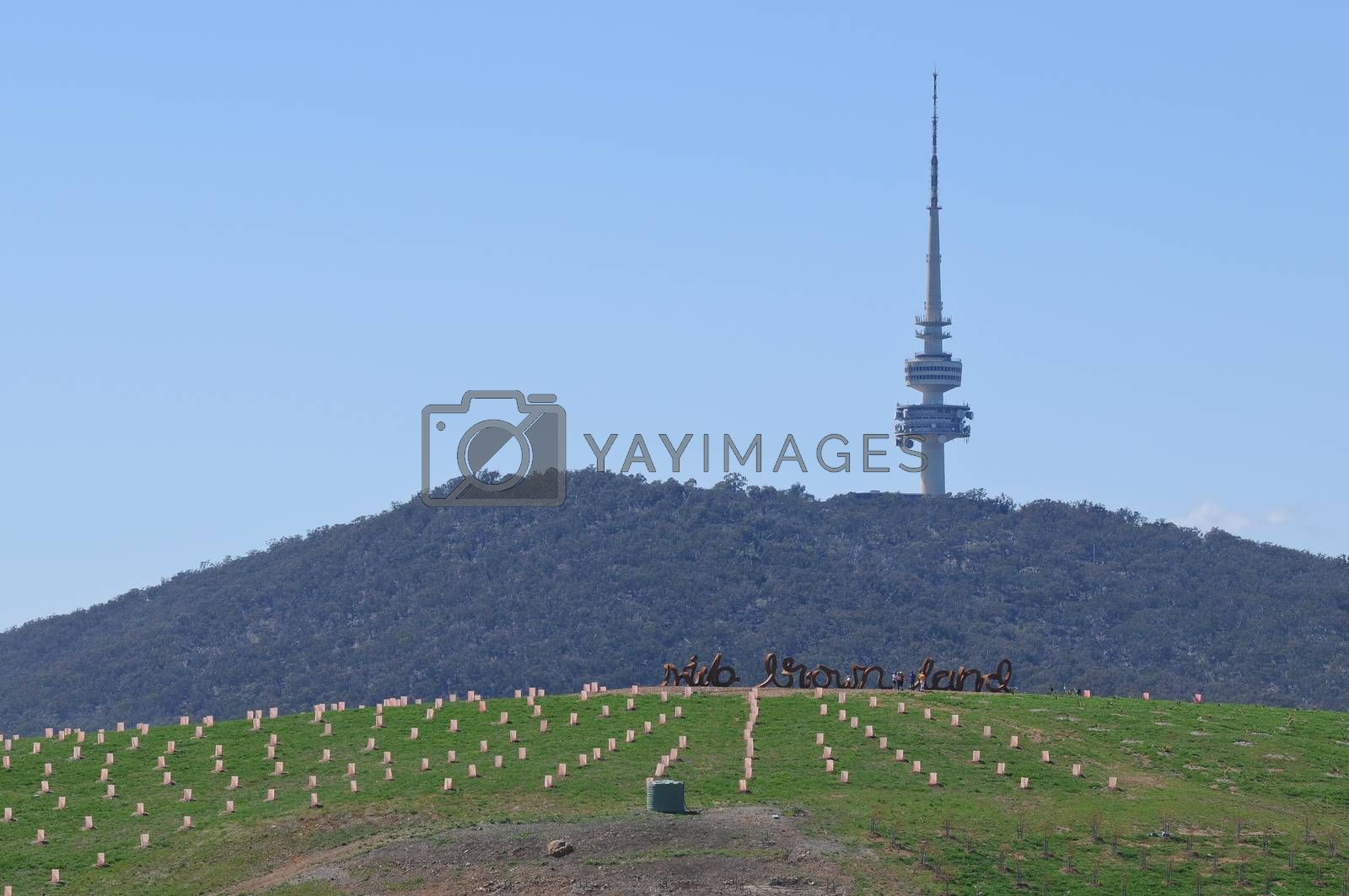 high rise communication tower up in the greeny hill in Canberra