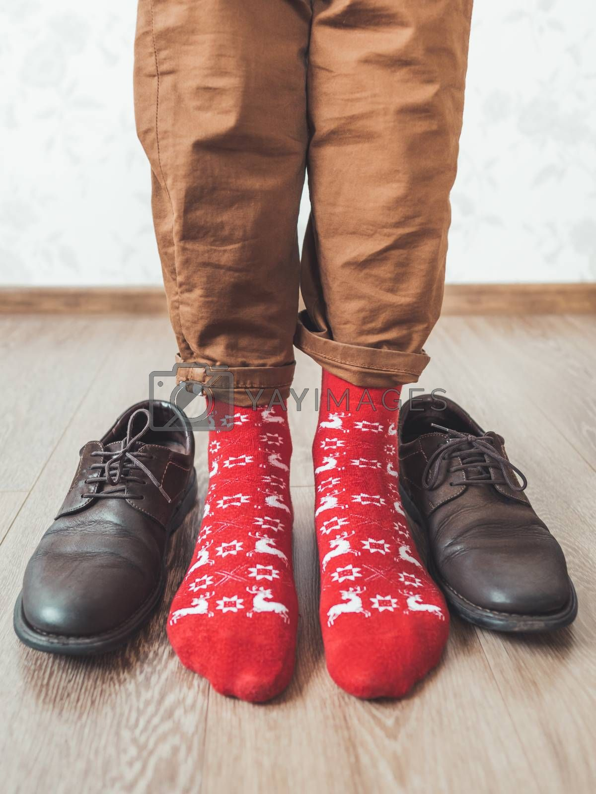 Royalty free image of Young man in chinos trousers and bright red socks with reindeers on them is ready to wear sude shoes. Scandinavian pattern. Winter holiday spirit. Casual outfit for New Year and Christmas celebration. by aksenovko