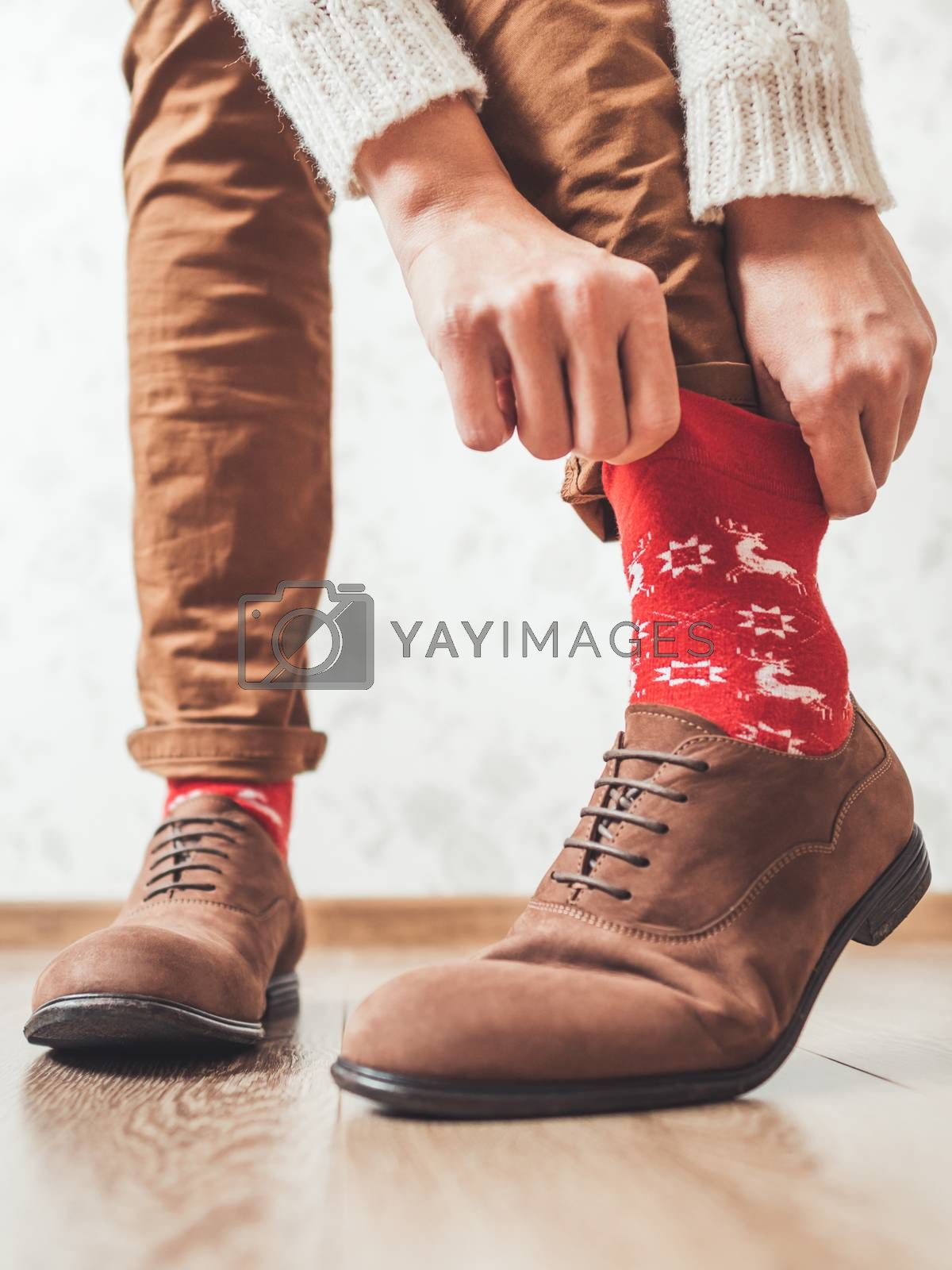 Royalty free image of Young man pulls up leg of his chinos trousers to show bright red socks with reindeers on them. Scandinavian pattern. Winter holiday spirit. Casual outfit for New Year and Christmas celebration. by aksenovko