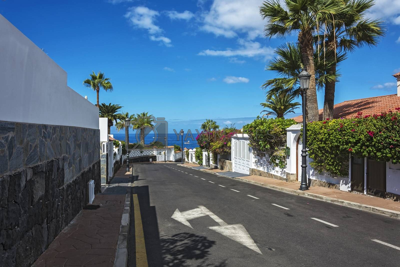 The city of scenic landscape with views of the ocean (Los Canary Islands, Tenerife, Spain)