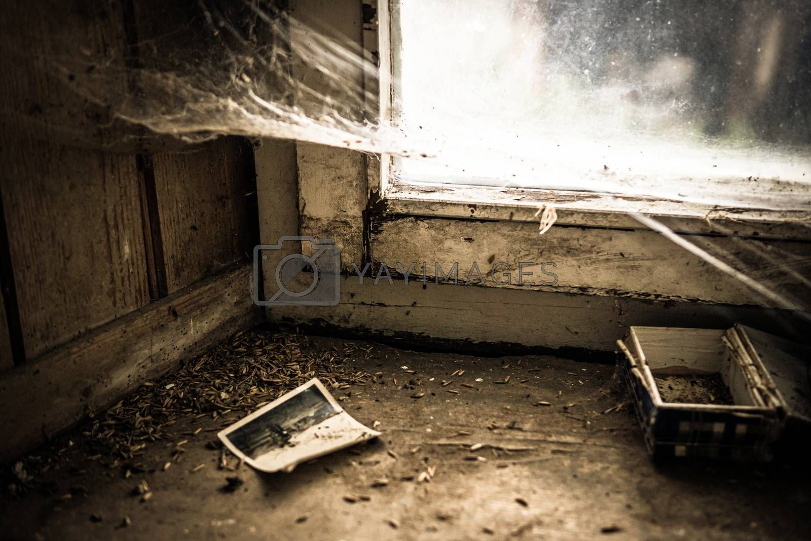 Urban exploring in an old abandoned farm house, a lost place with dirty furniture and dusty paintings