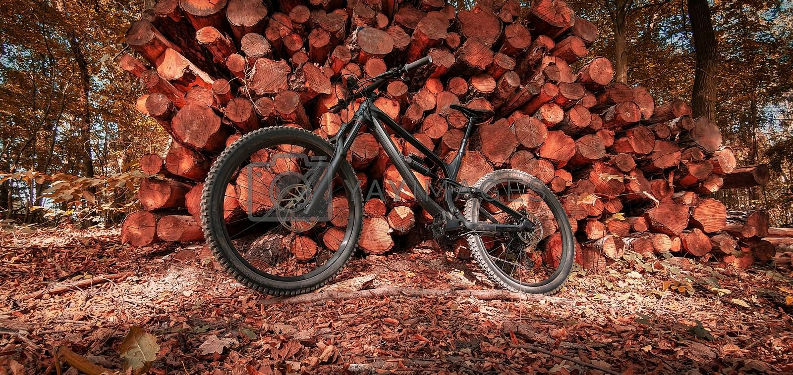 Full suspension mountain bike leaned on a stacked pile of timber logs in a beautiful autumn forest trail. Mountain biking concept. Freedom and recreation concept.