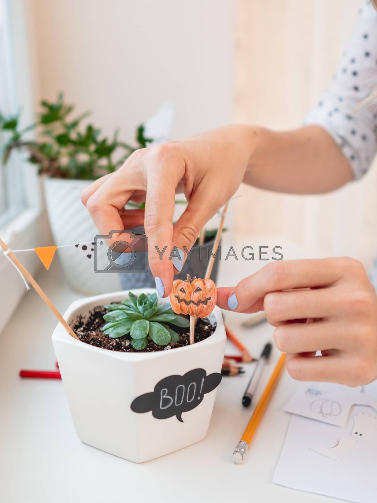 Woman decorates flower pots with handmade stickers for Halloween. Hand drawn pumpkin and flags in flower pot with succulent plant.