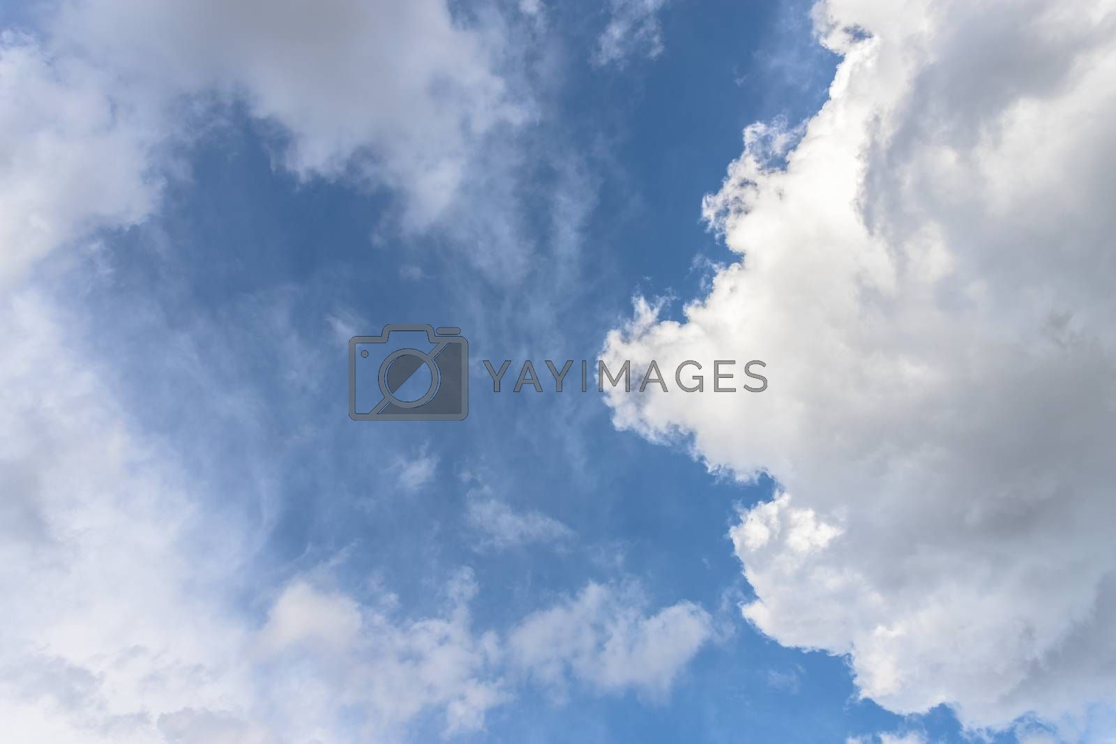 Stunning sky with fluffy clouds