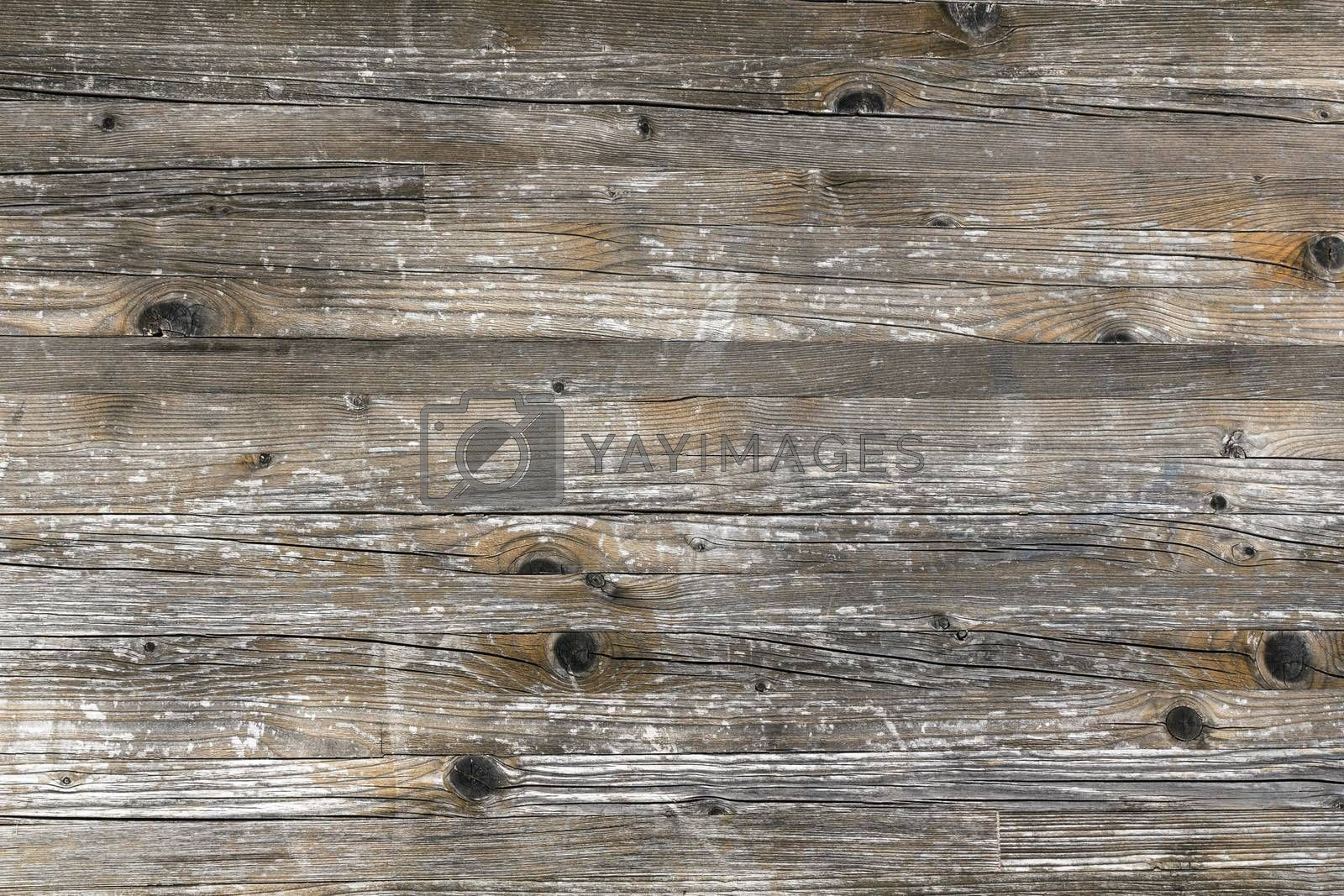 Wooden background. Wood backdrop forphotography grunge wooden texture.