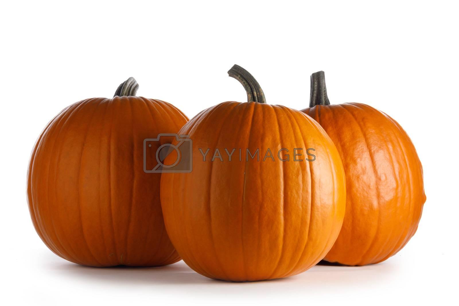 Three whole orange pumpkins isolated on white background
