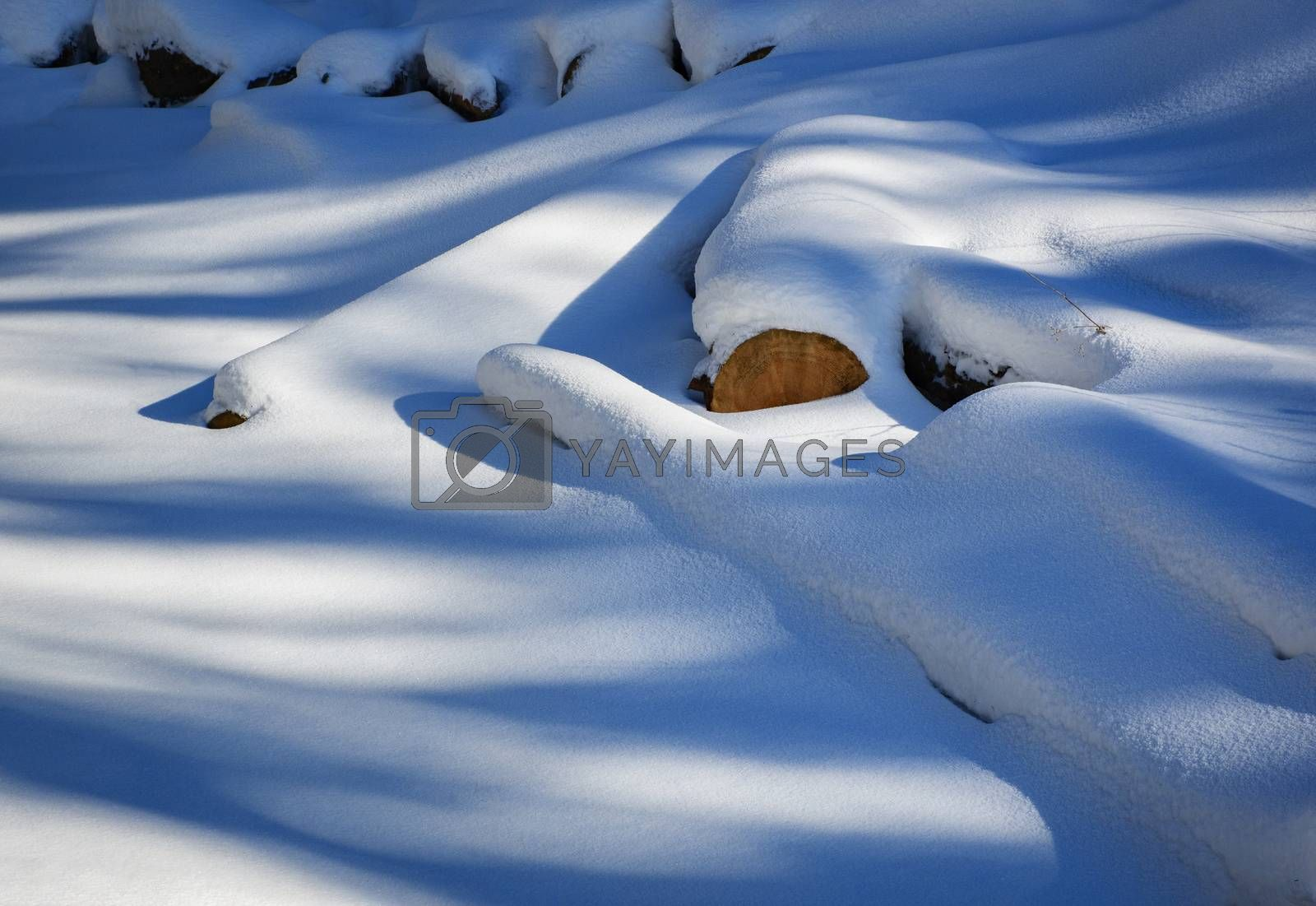 seasonal winter background snowy wood dump