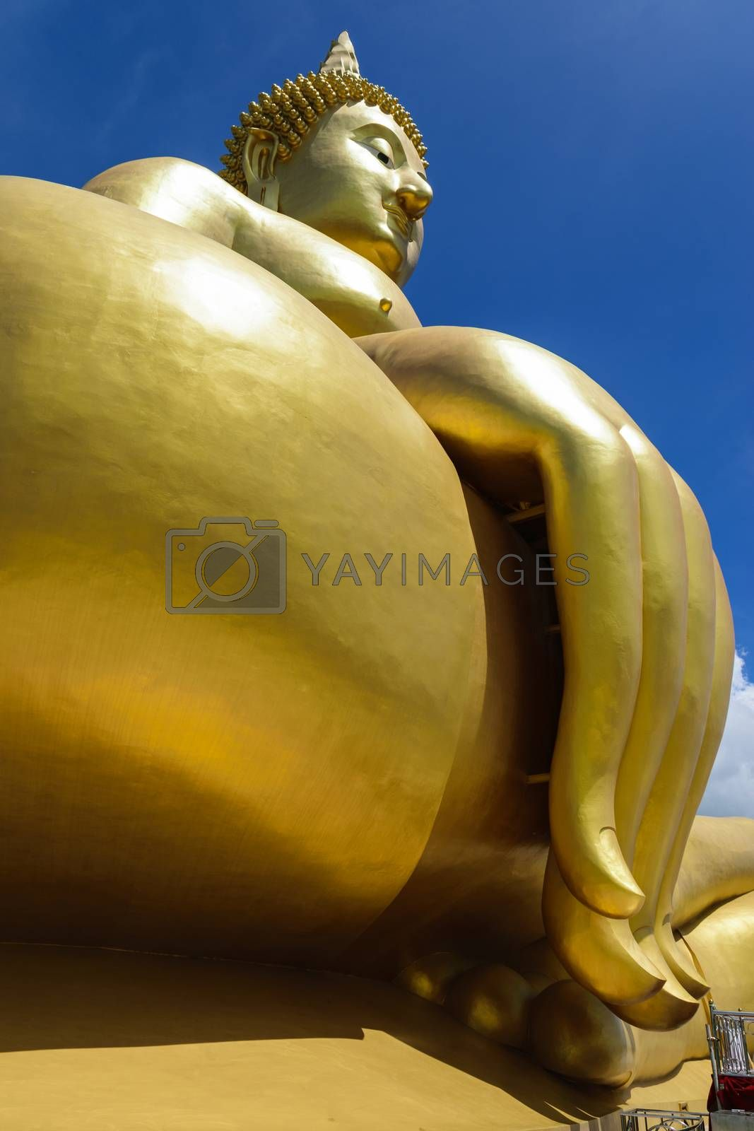 Buddha, the largest in the world. by wattanaphob