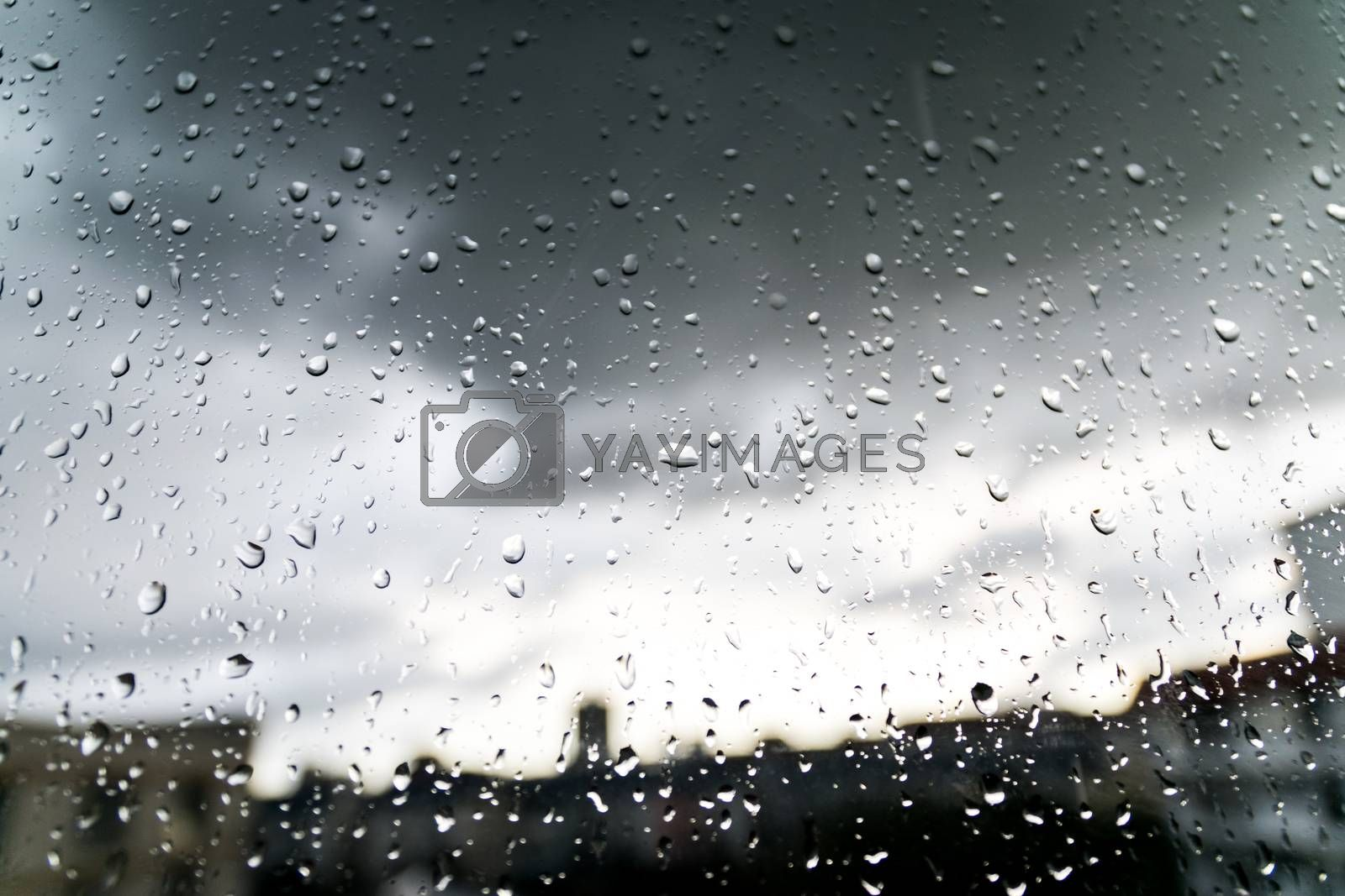 Beautiful nature wallpaper by Raining and dews drop on the glass.