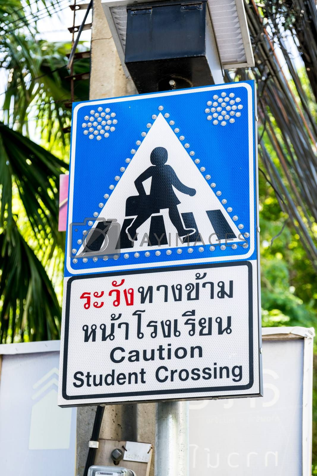 Caution student crossing signboards.