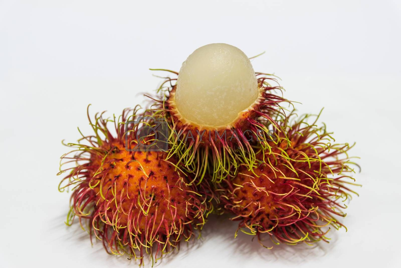 Rambutan thai fruits a red, plum-sized tropical fruit with soft spines and a slightly acidic taste.