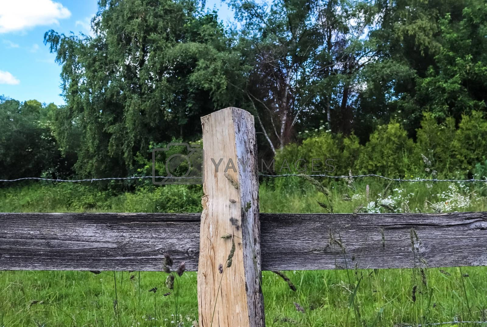 Beautiful wooden horse fence at an agricultural field on a sunny day