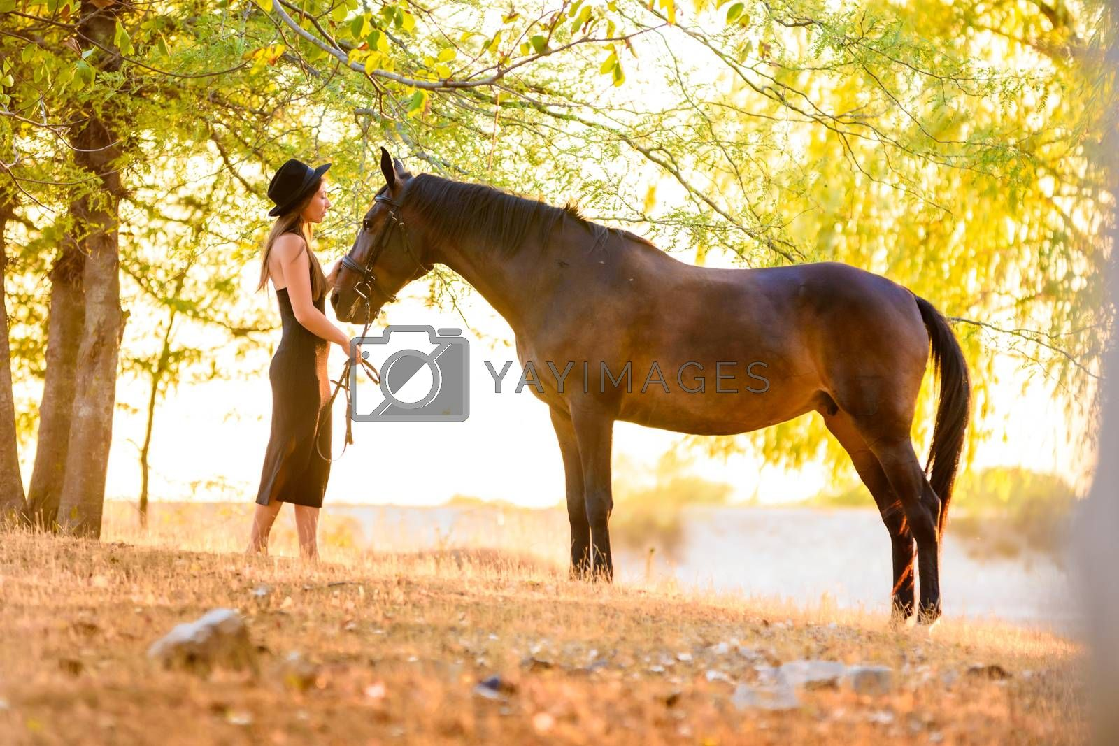 Beautiful girl stands with a horse in the forest at sunset with beautiful backlighting