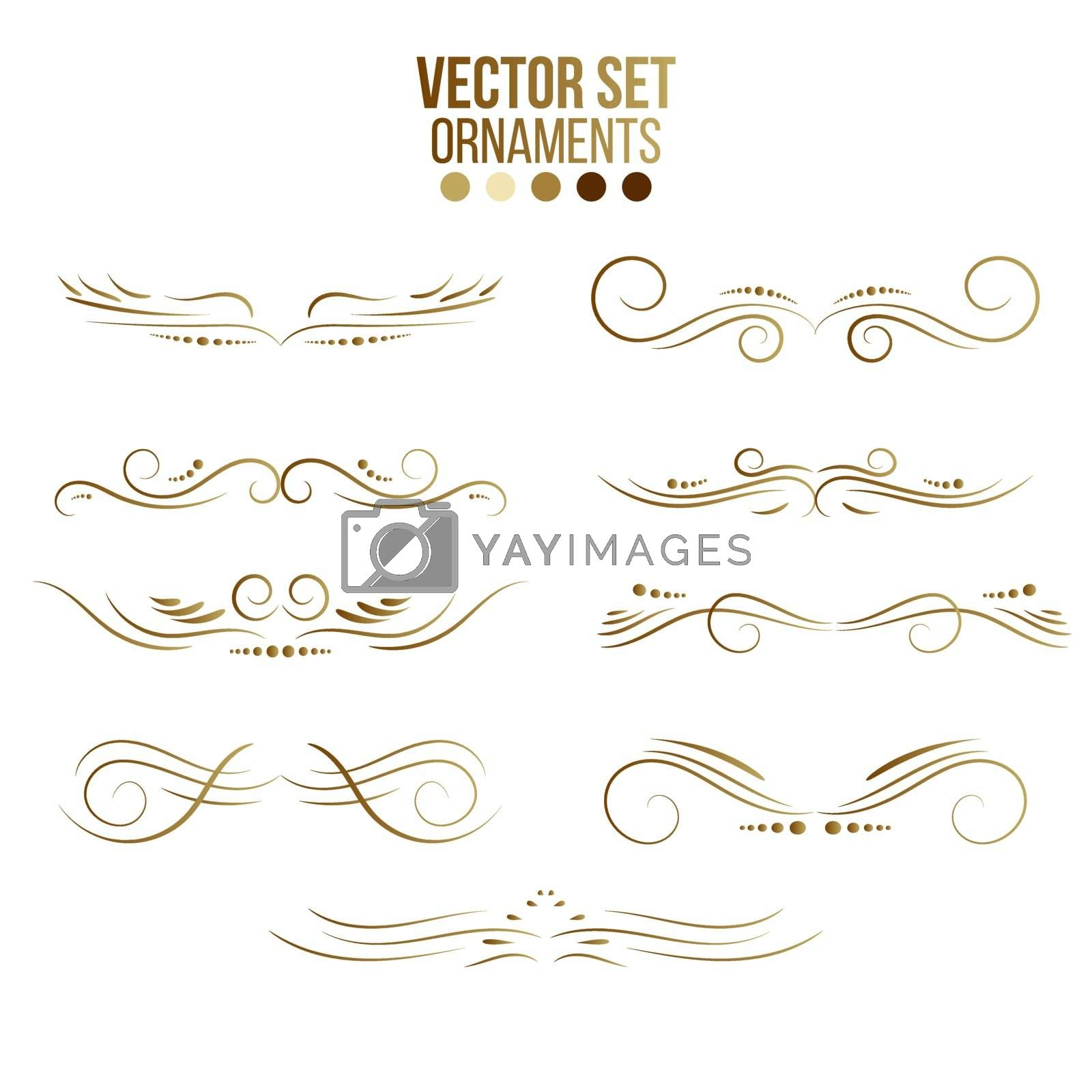 Gold Rule Lines and Ornaments collection of vector vintage decorative elements.Set of ornate lines, wedding and frame.