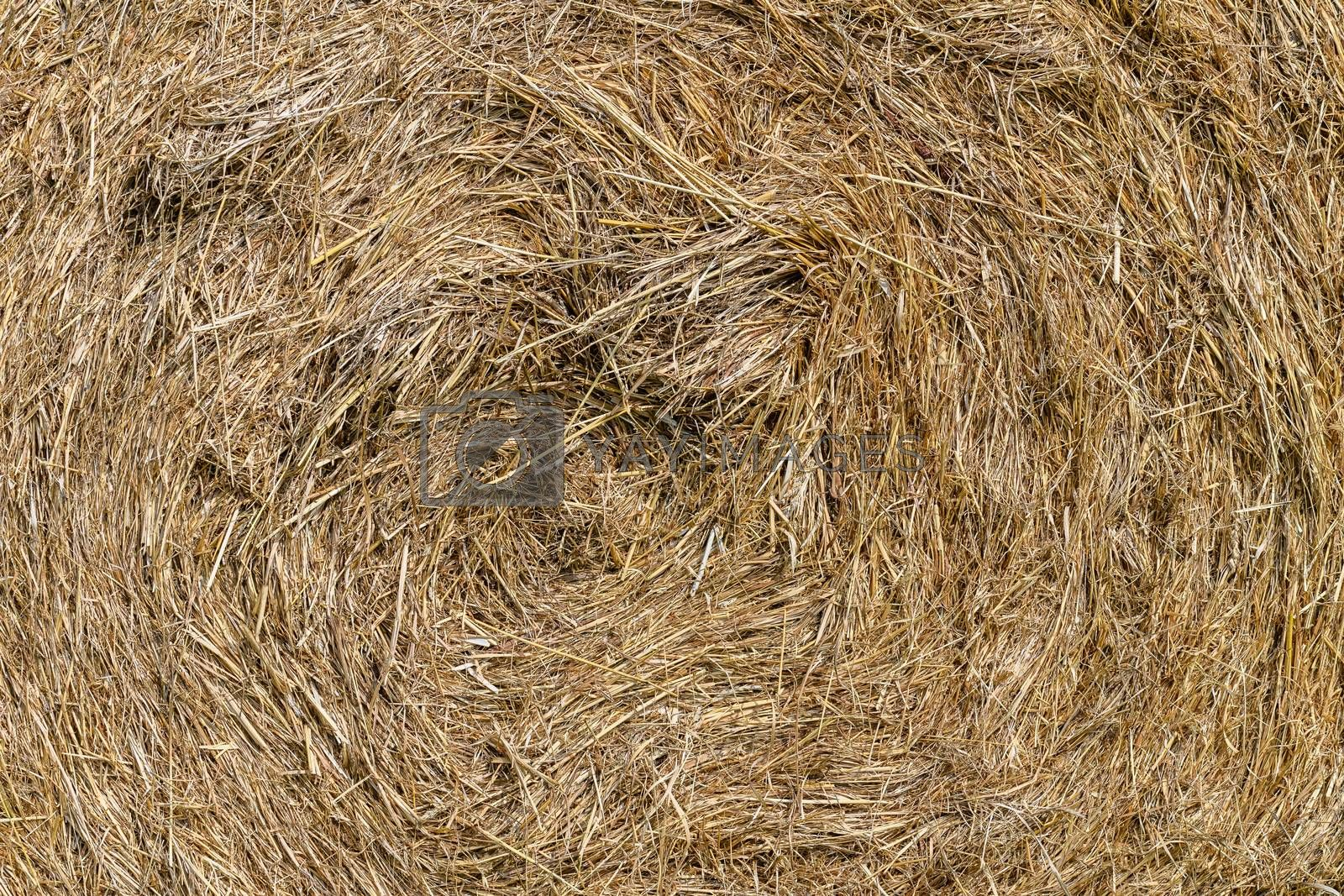 Close up of a hay bale