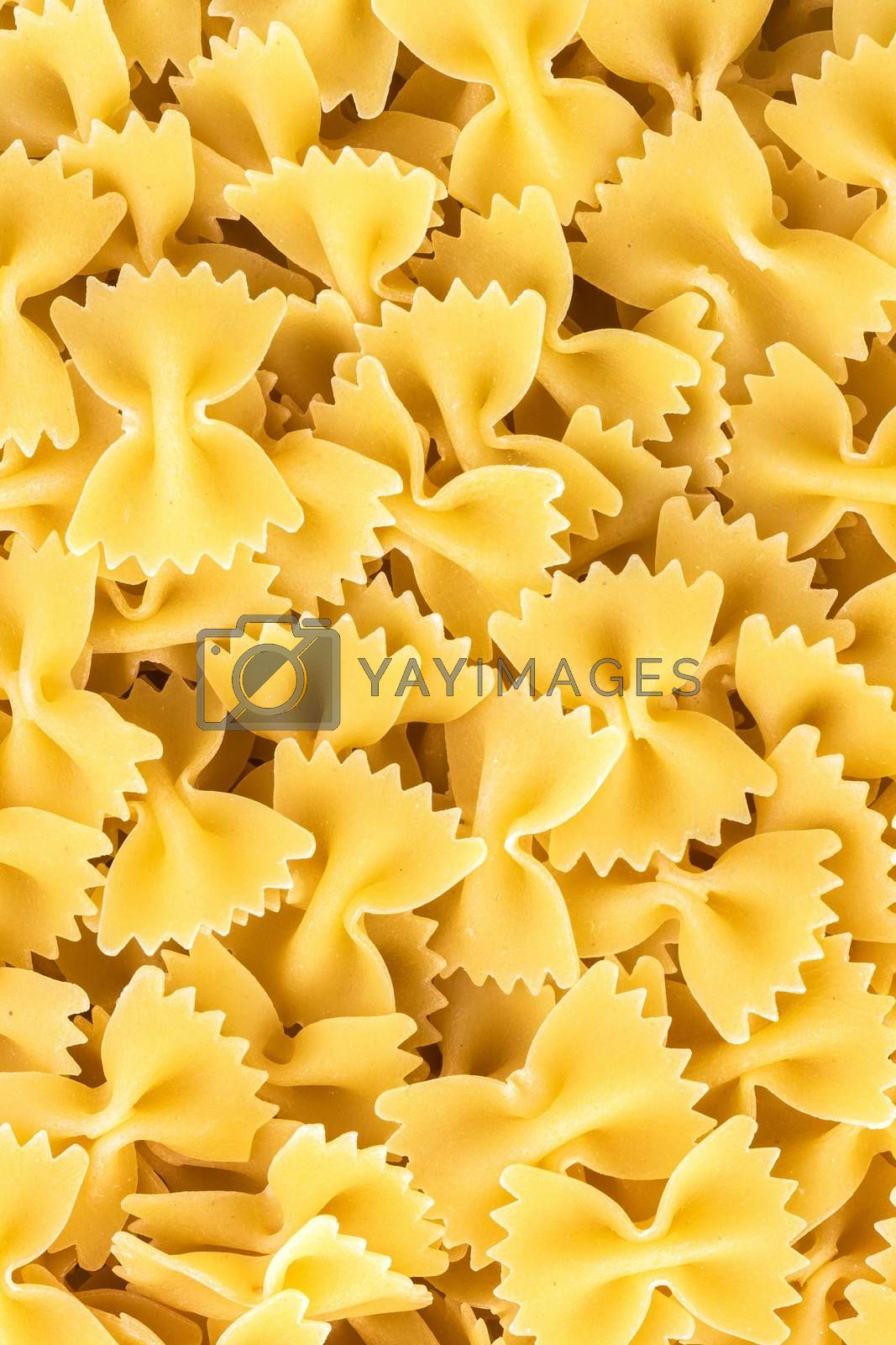 """Famous variety of type and shape of Italian pasta. Dry pasta bows """"farfalle"""". Heap of bow tie macaroni. The name of this pasta type is derived from the Italian word """"farfalla"""" (butterfly)."""