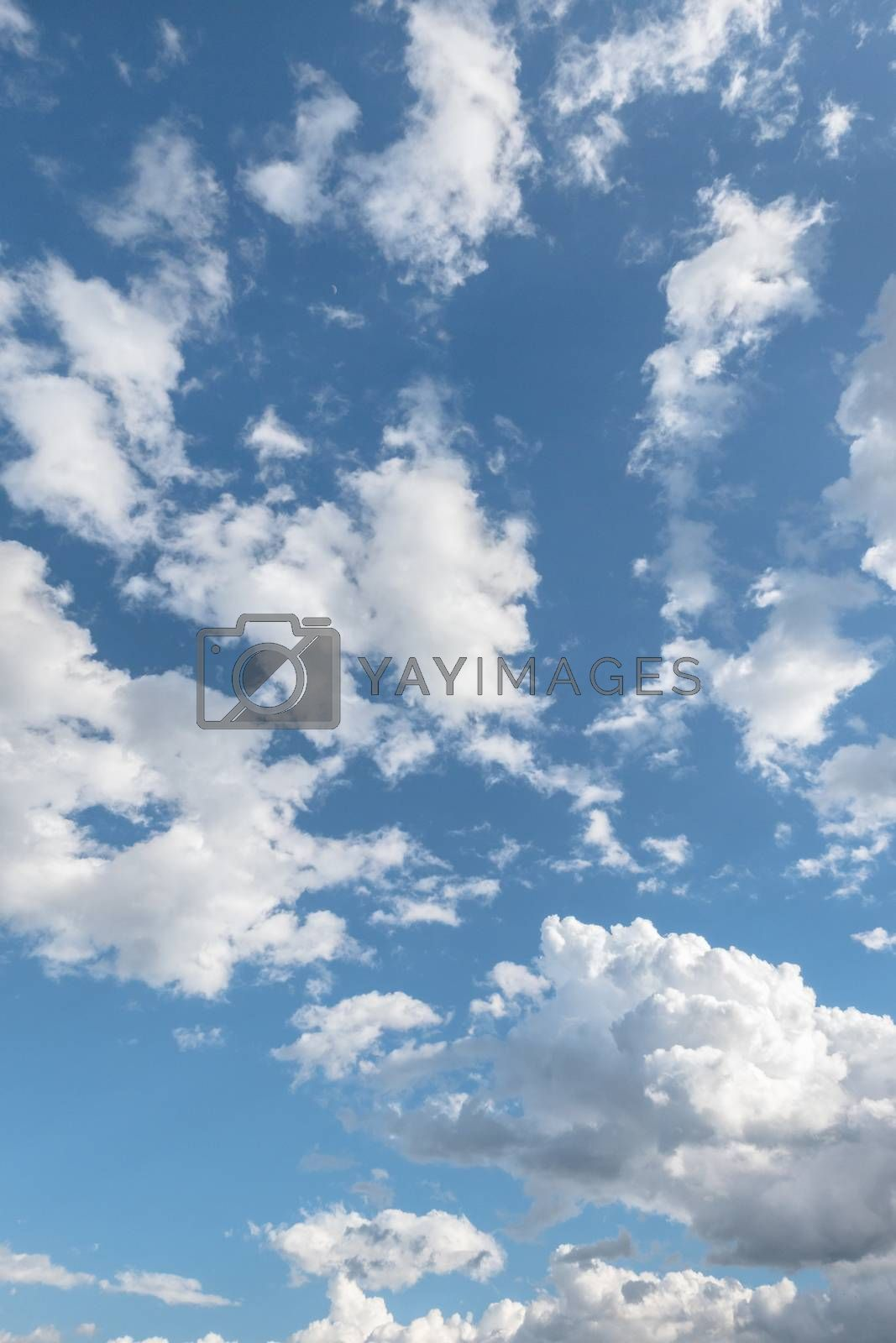 Clouds with blue sky. Ideal for textures and backgrounds.