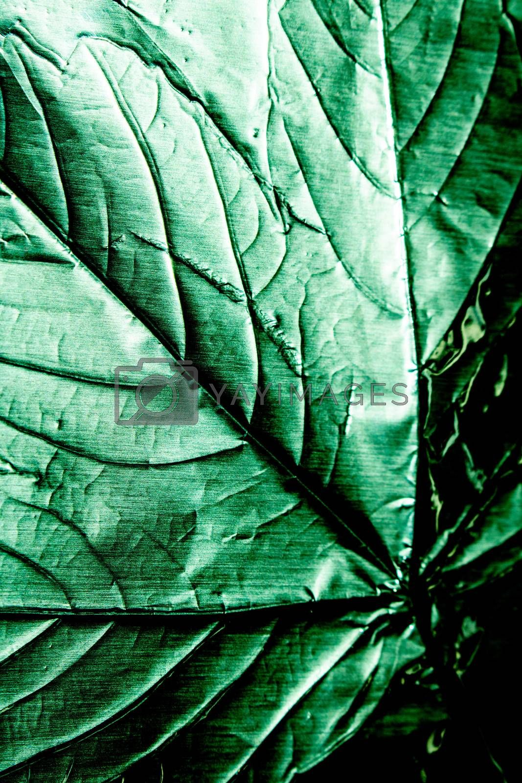 Holographic Foil Leaf and Leaves with Veins Texture Shiny Pattern
