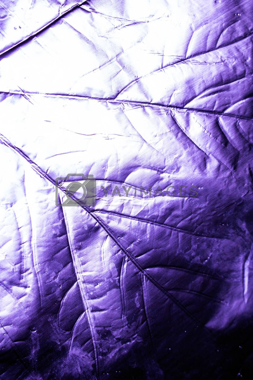 A Holographic Foil Leaf and Leaves with Veins Texture Shiny Pattern