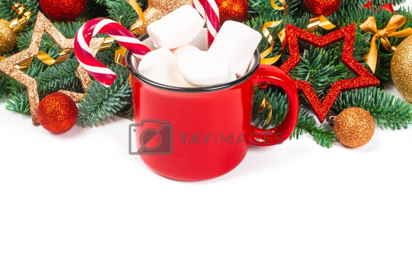 Cocoa in red mug with marshmallows and candy cane and fir tree branches and red and golden baubles and stars isolated on white background