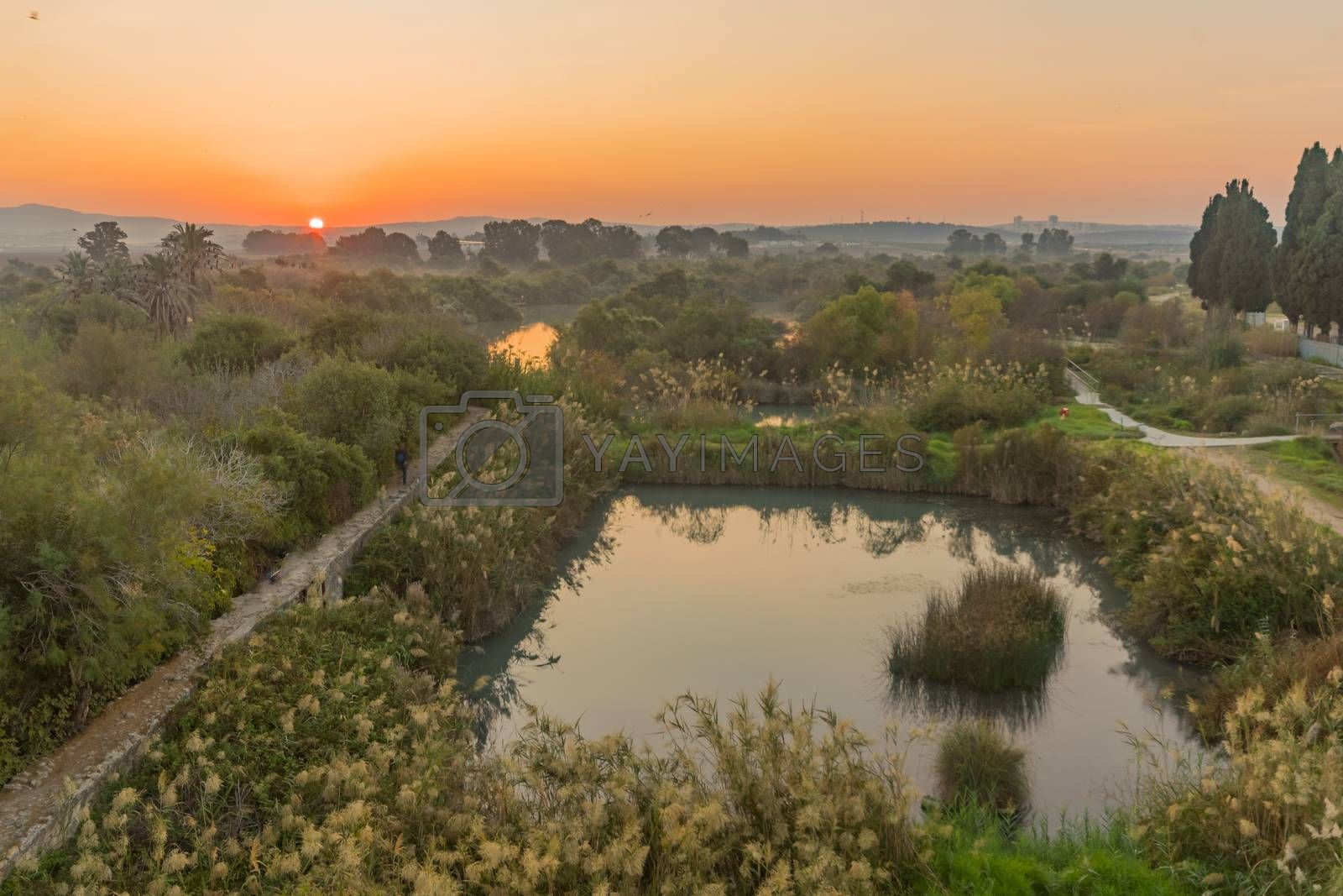 Sunrise view over wetland and ancient canal system, in En Afek nature reserve, northern Israel