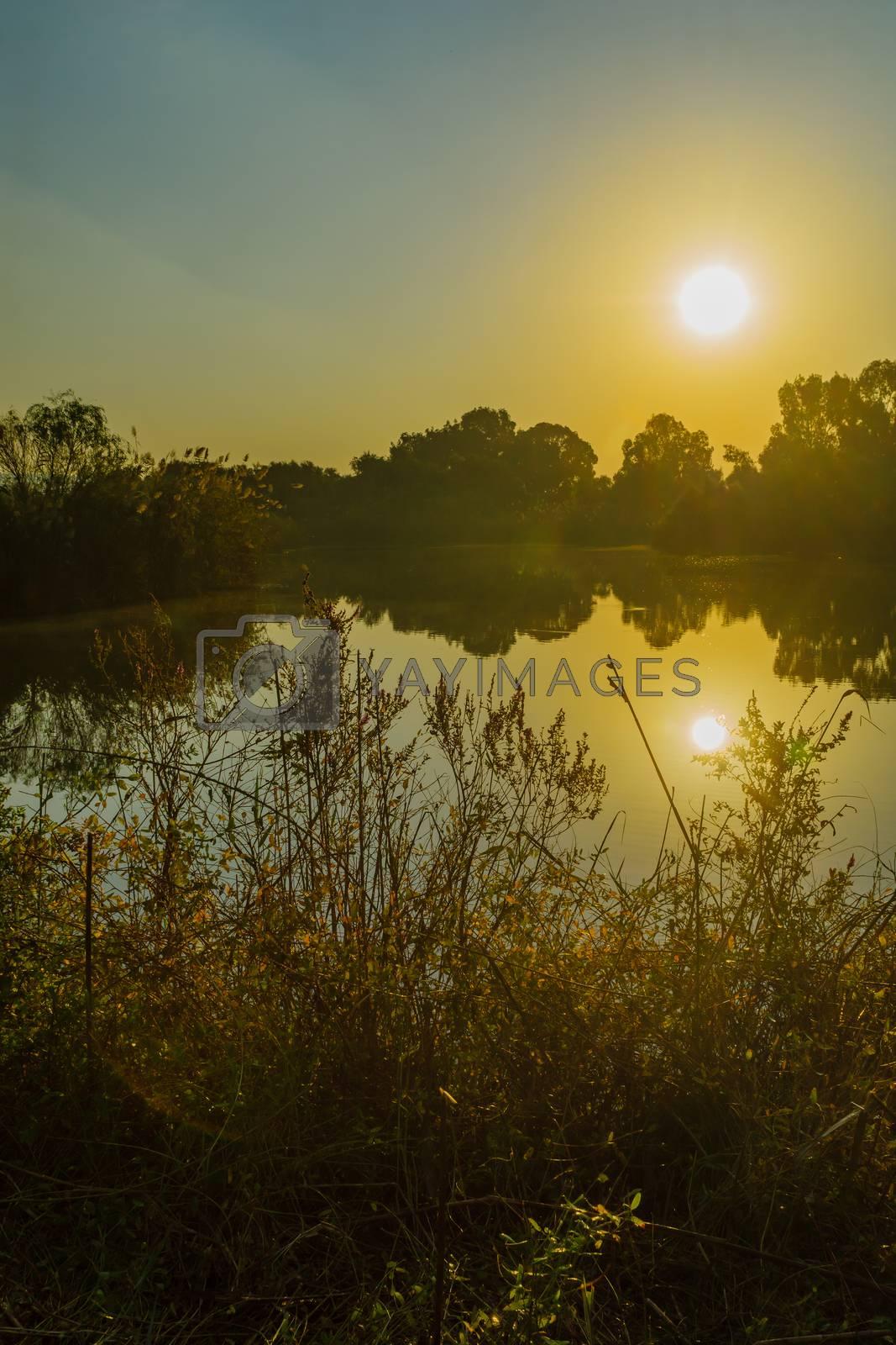 Morning view over wetland, in En Afek nature reserve, northern Israel
