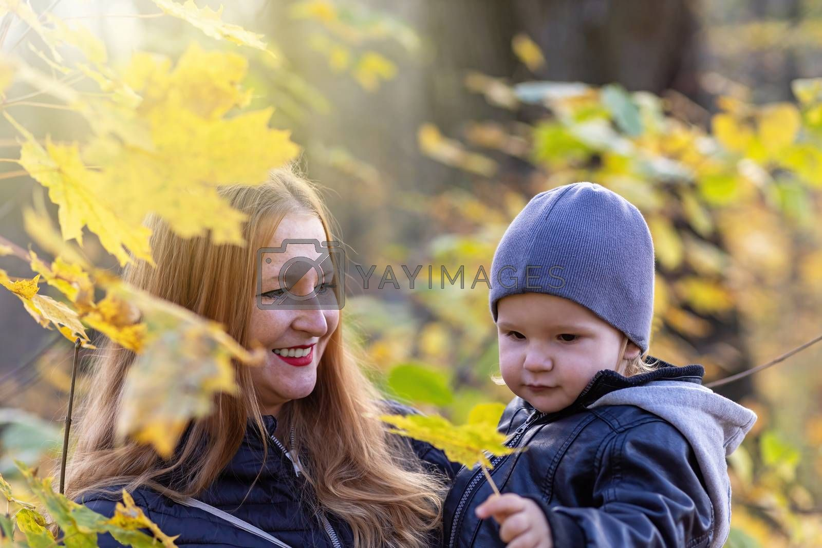 Smiling red haired mother with her little son are posing under maple tree in autumn park.