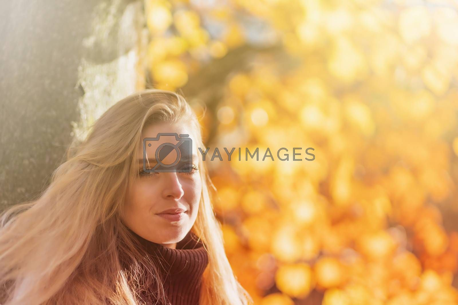 Portrait of attractive girl in autumn park. The girl is looking at the camera. Photo in soft light autumn colors.