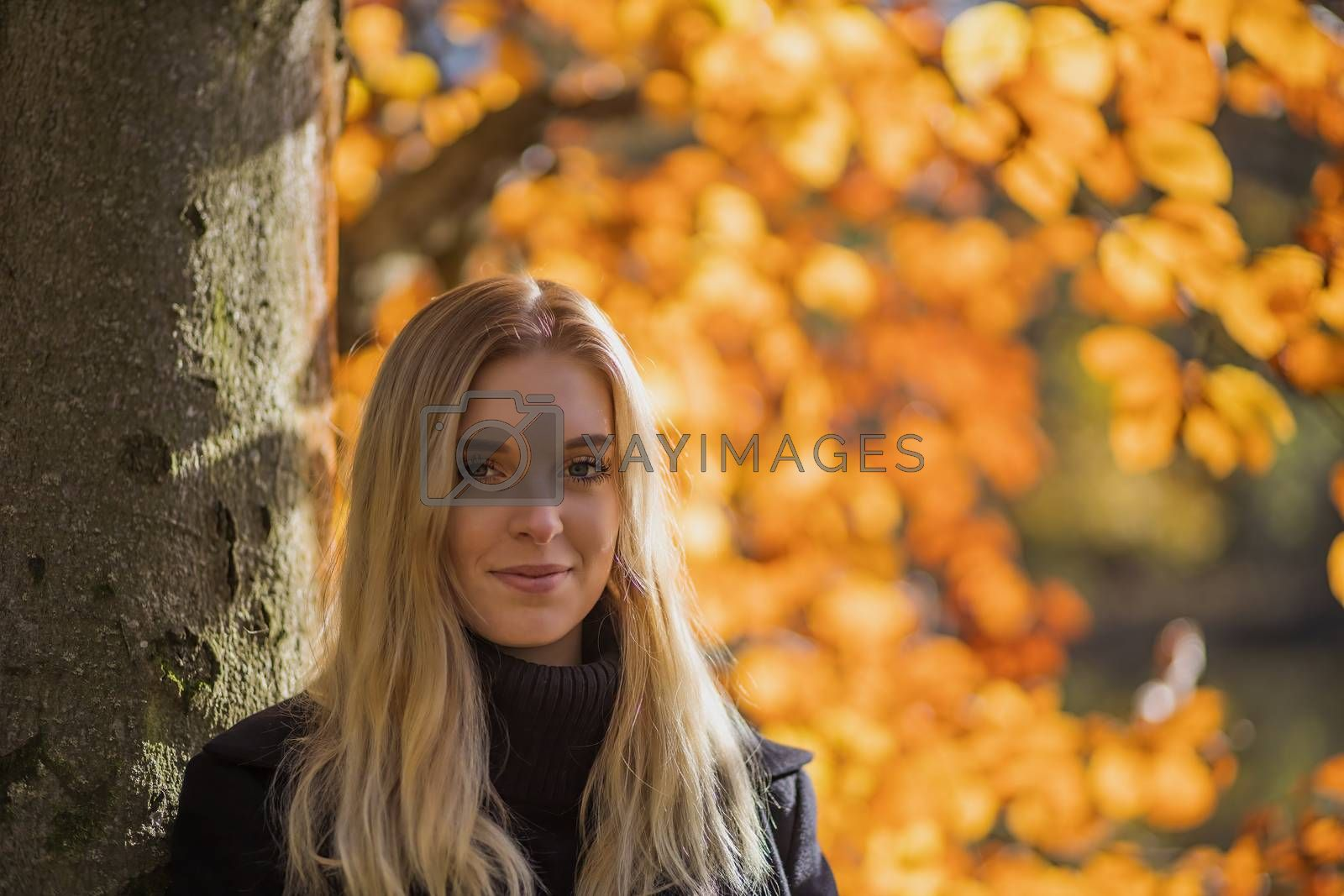Portrait of girl in autumn park. The girl is looking at the camera.