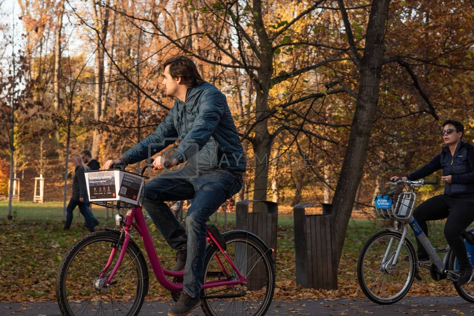 11/14/2020. Park Stromovka. Prague. Czech Republic. A man is riding his bike at the park on a winter day.
