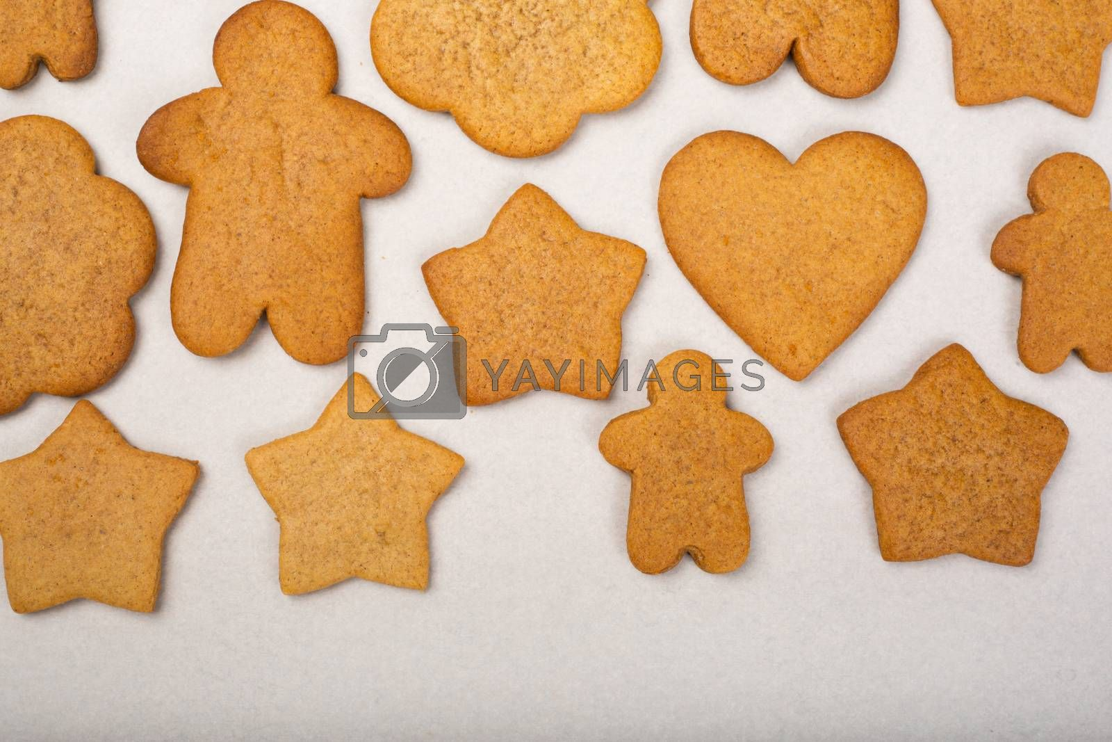 Royalty free image of Gingerbread cookie background by destillat