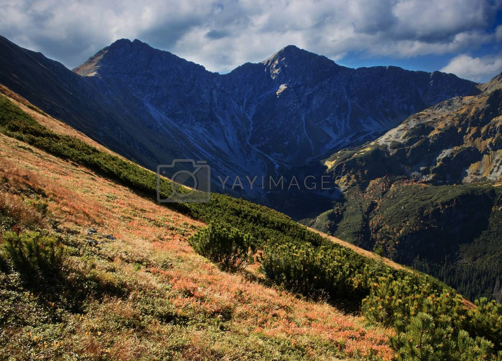 seasonal landscape background view of autumn mountain ridge