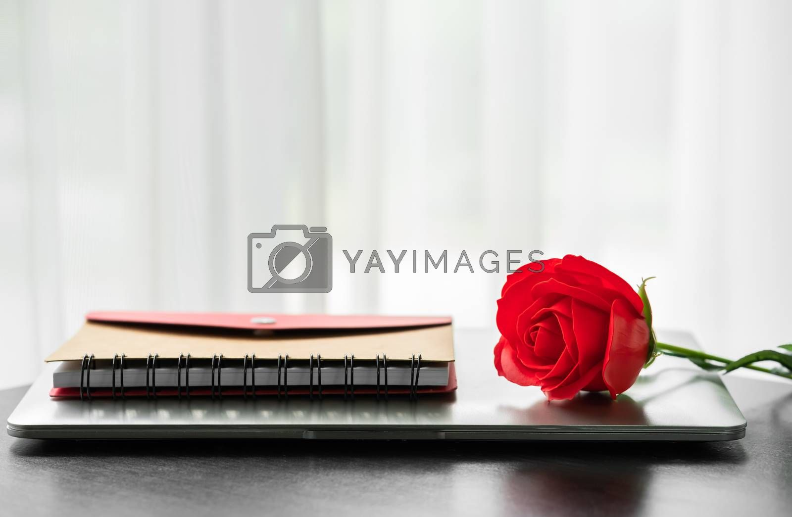 Red rose and the laptop on deck, Valentine concept
