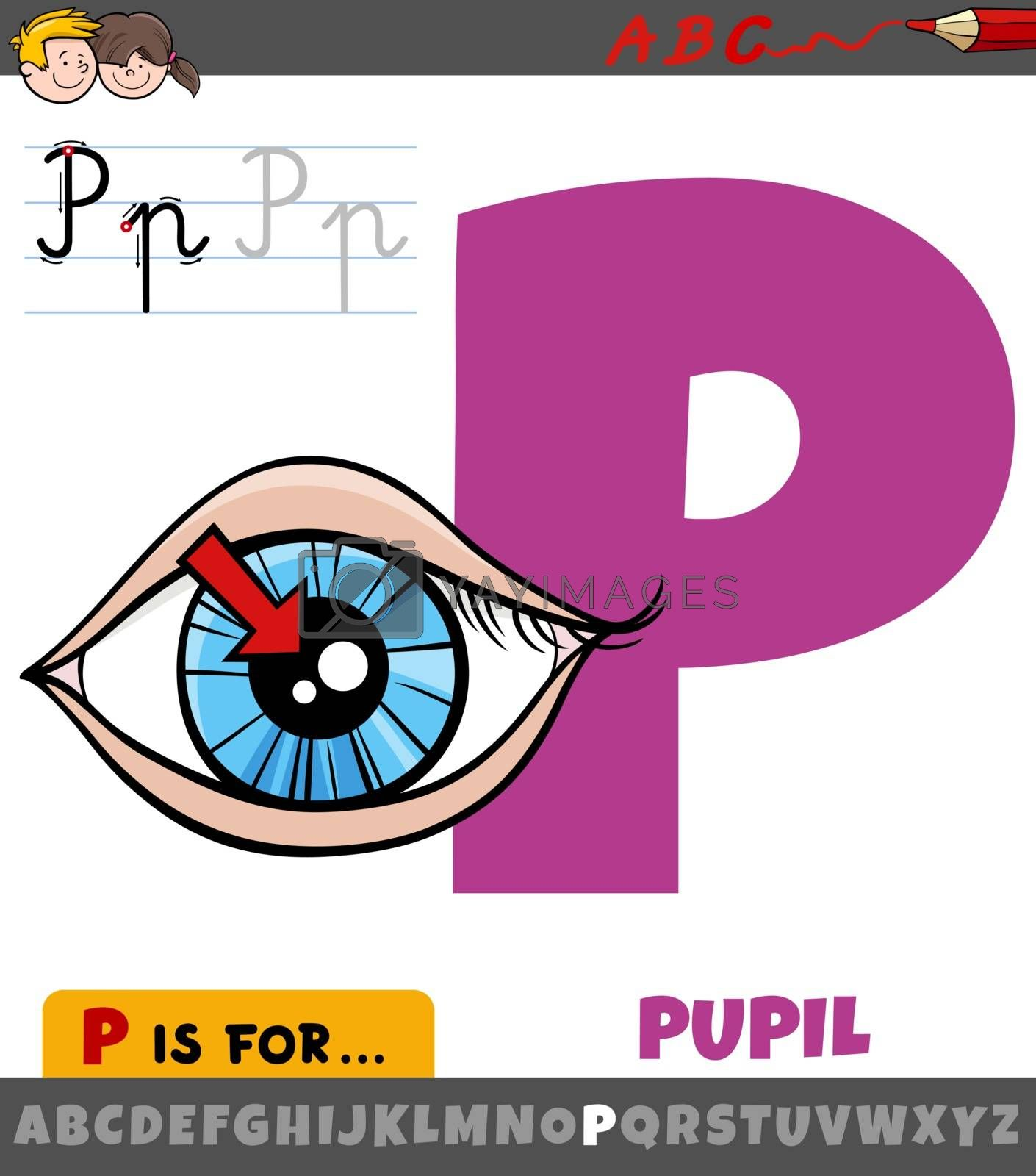 Educational cartoon illustration of letter P from alphabet with pupil of the eye for children