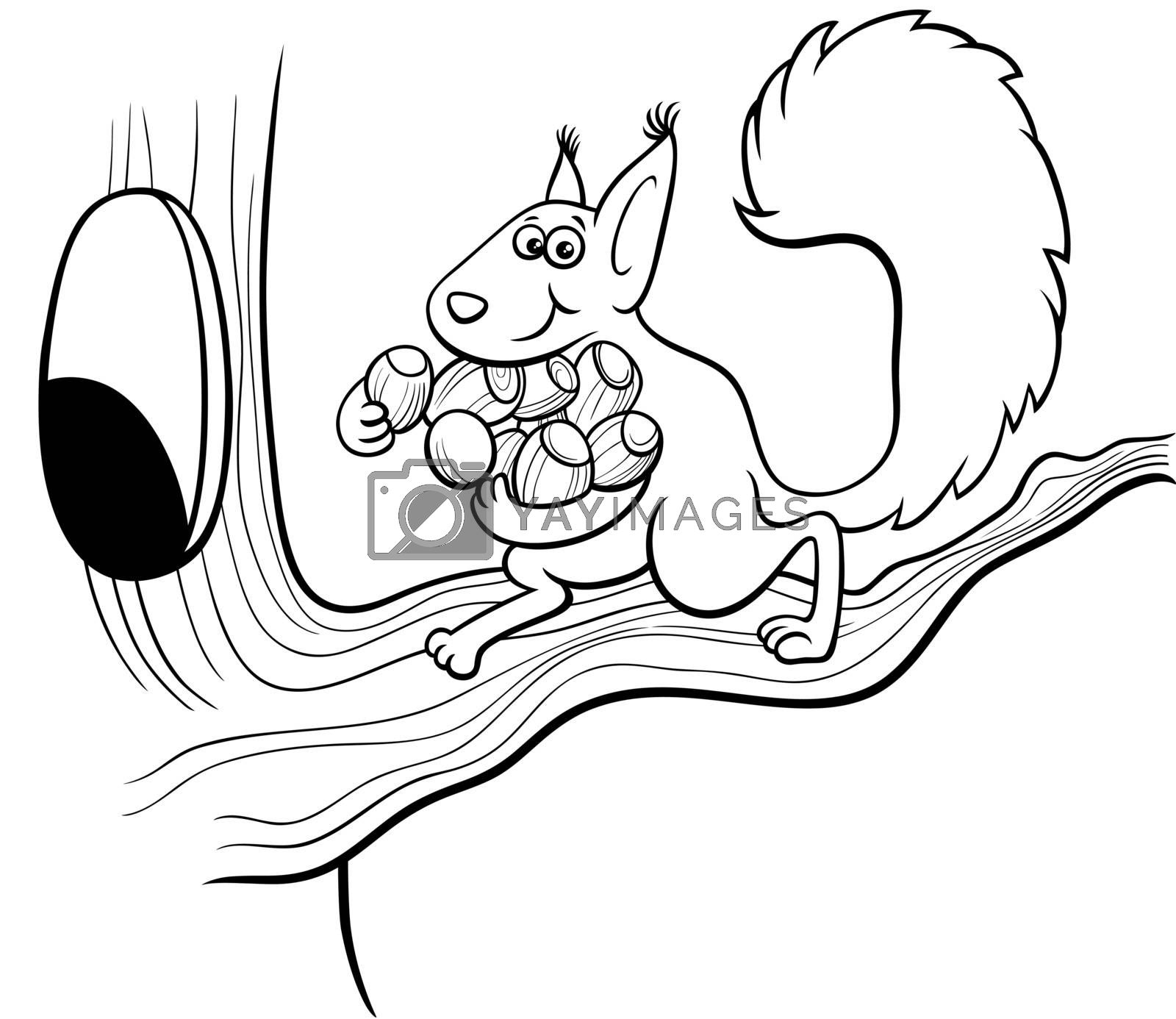 Black and white cartoon illustration of funny squirrel animal character carrying acorns to the hollow in the tree coloring book page