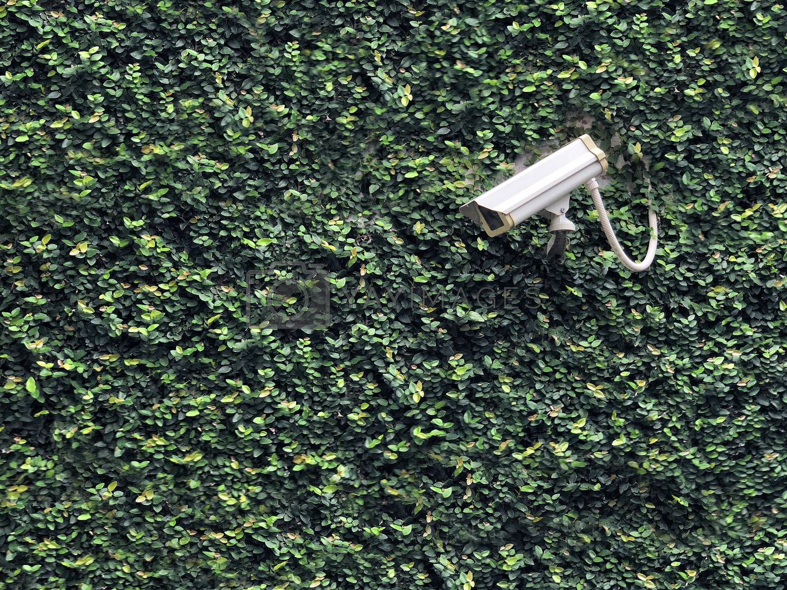 CCTV camera recording safety in our property on nature background