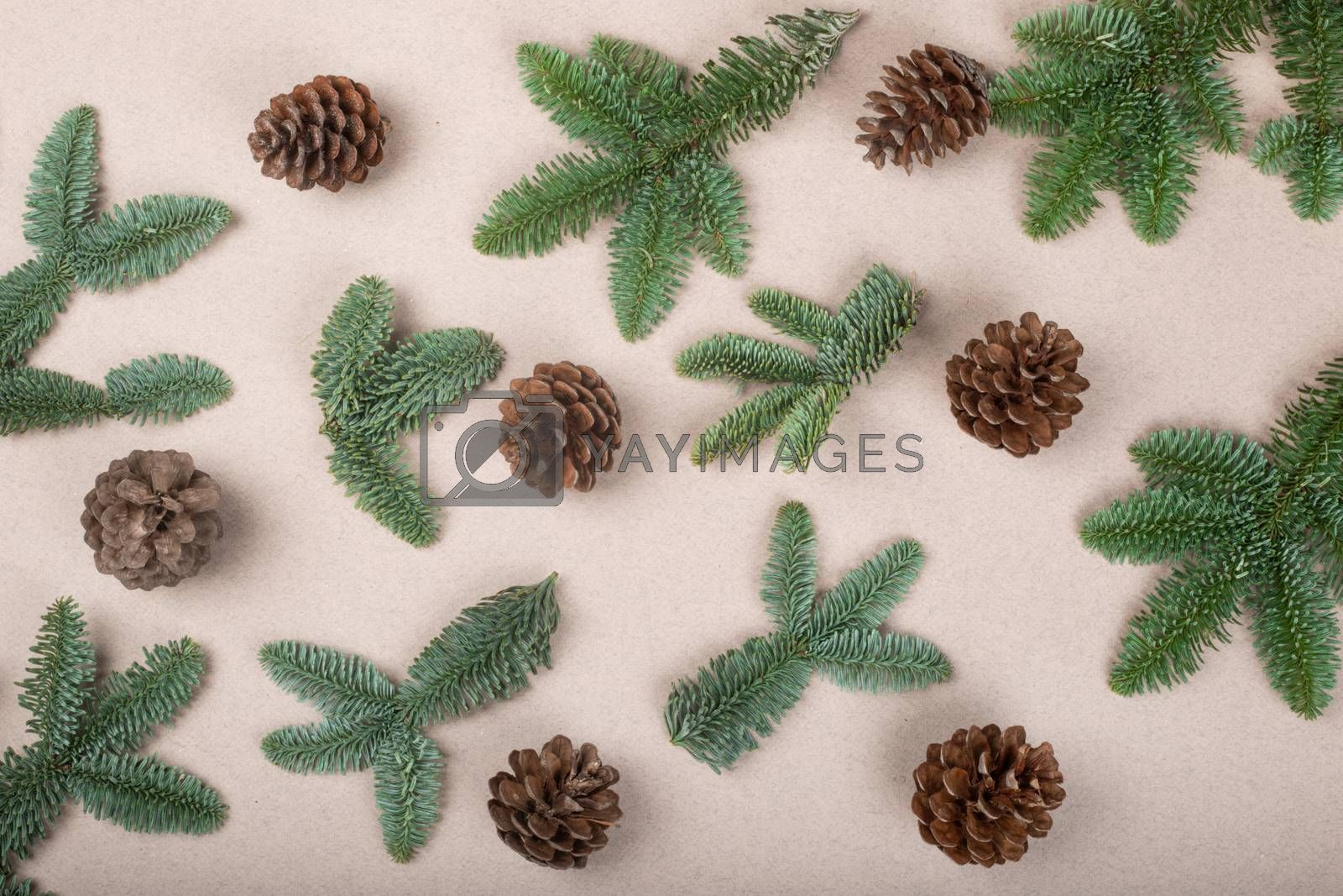 Royalty free image of Christmas card background by destillat