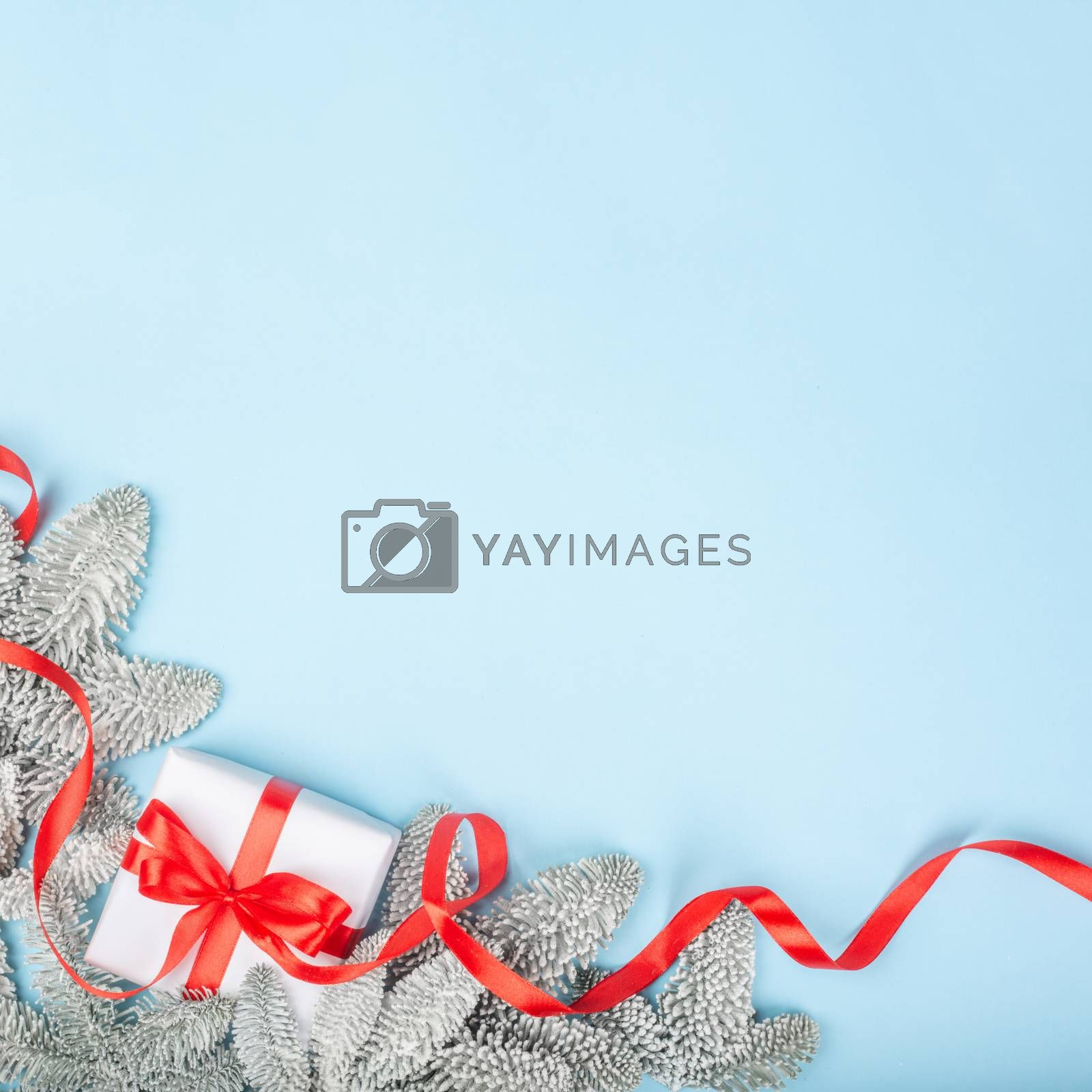 Royalty free image of Frost fir tree and Christmas gift by destillat
