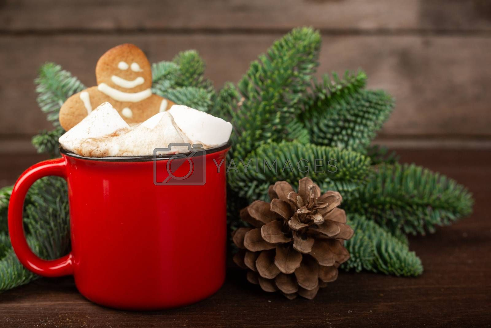 Cocoa hot chocolate in red mug with marshmallows and gingerbread cookie man , fir tree branches and pine cones on dark wooden background
