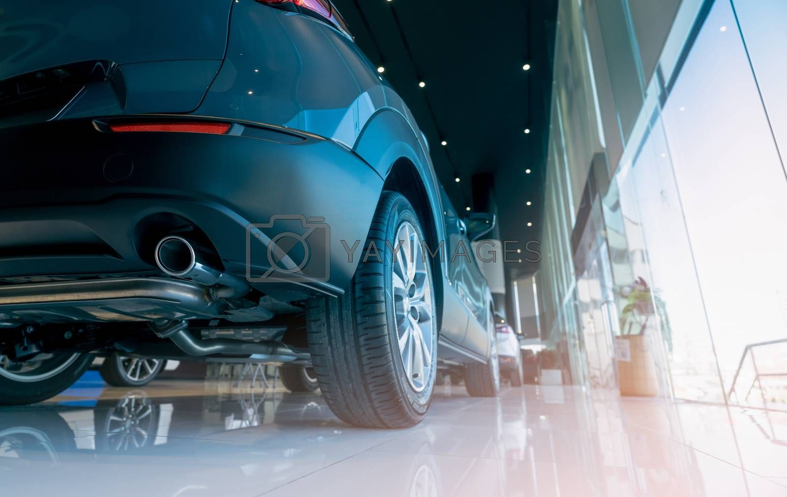 Selective focus on car in modern showroom. Back view of new car in glass building. Car dealership concept. Checklist of car before buying background. Electric automobile business. Showroom interior.