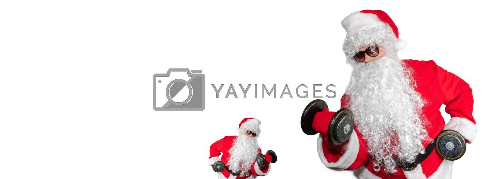 Santa Clauses working out, lifting dumbbells and doing bicep curls. One little santa facing a big santa. Isolated on white background. Sport, fitness, bodybuilding conept. Banner size, copy space.