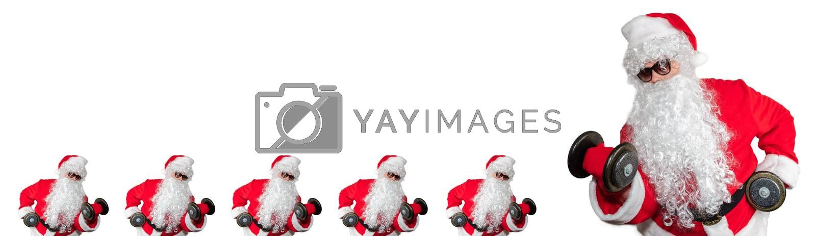 Santa Clauses working out, lifting dumbbells and doing bicep curls. Five smalls santas facing a big santa. Isolated on white background. Sport, fitness, bodybuilding conept. Banner size, copy space.