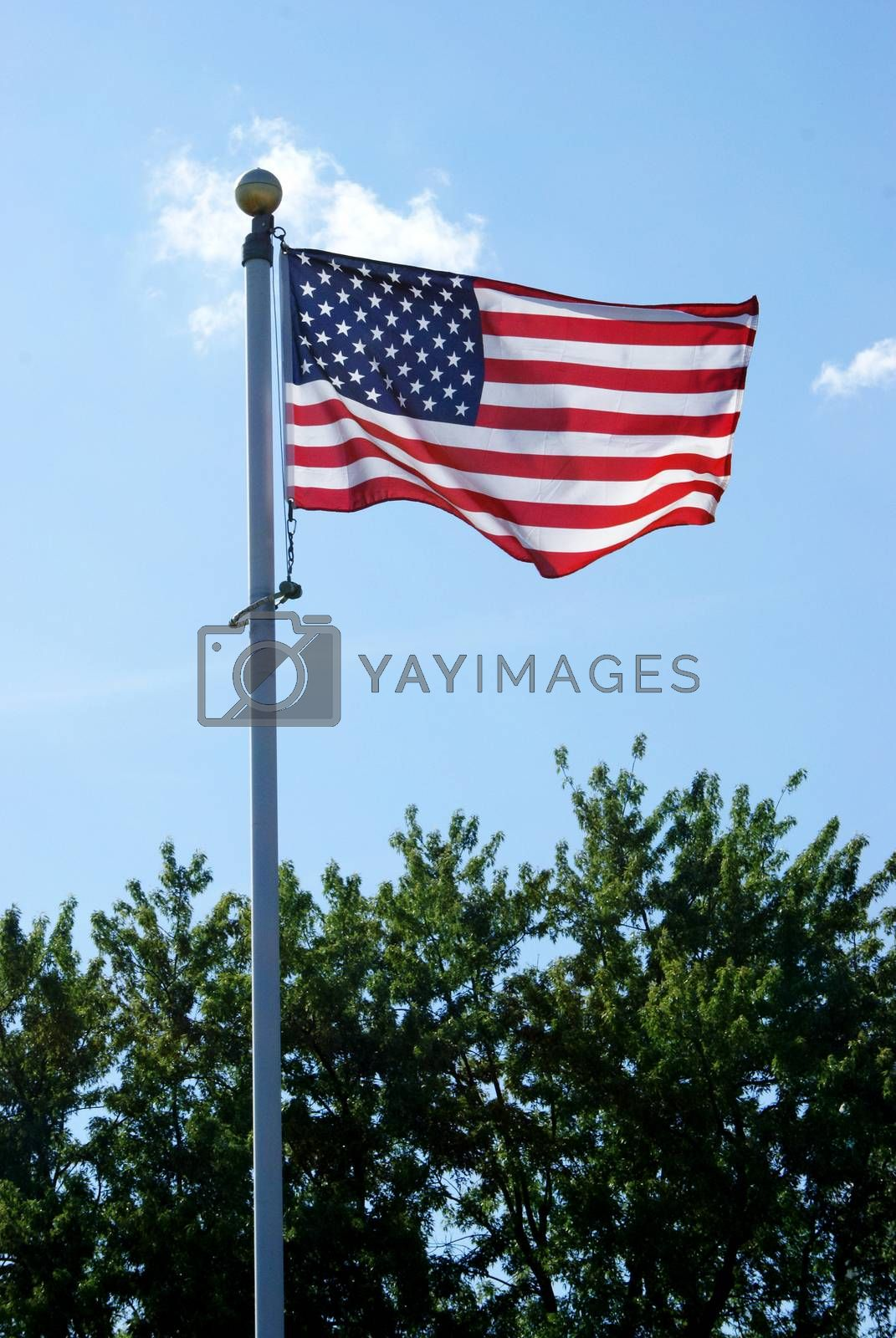 A vertical composition of an American flag flapping in the wind during the sunny daylight hours.