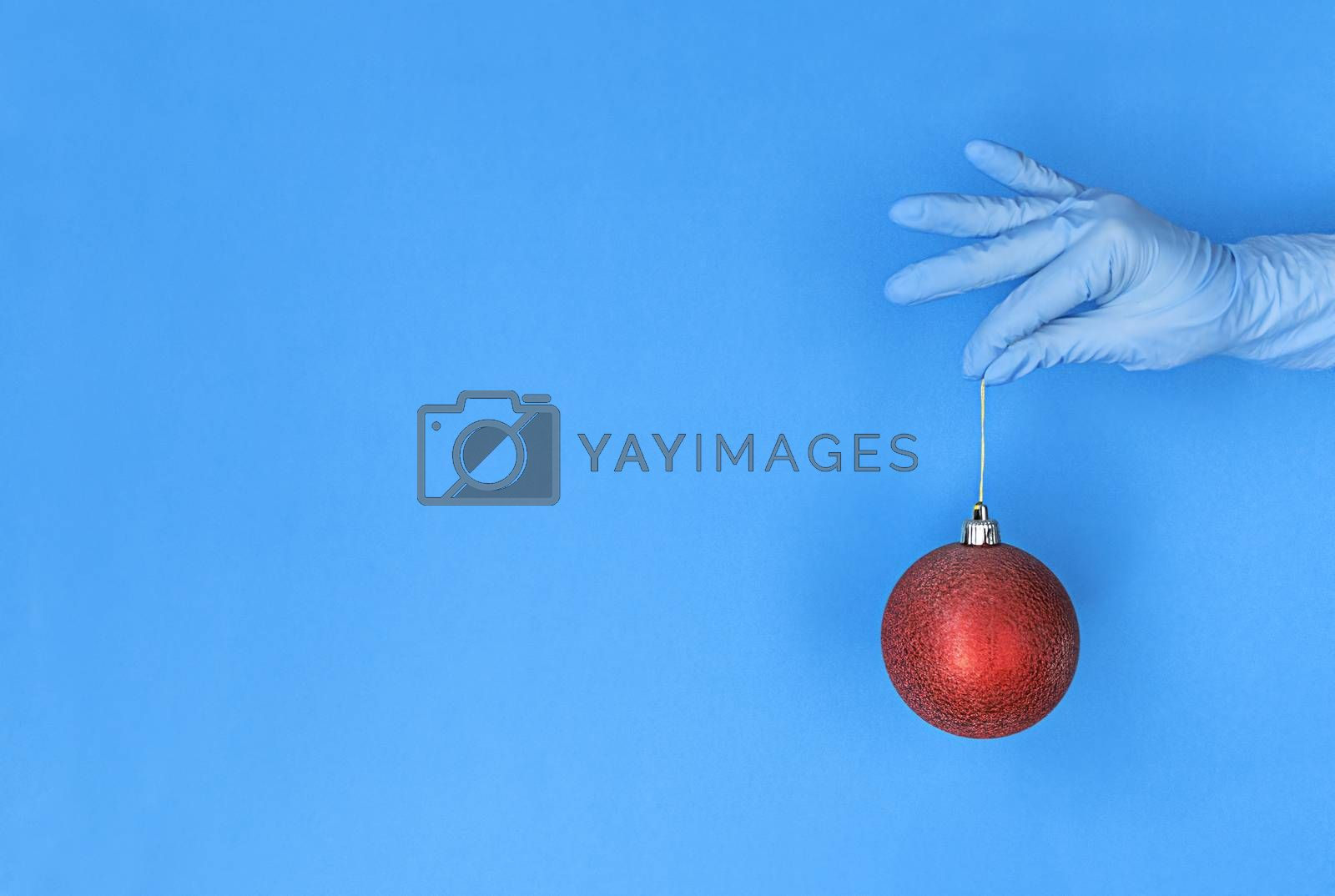 Hand in medical glove holds red christmas ball on a blue background with copy space.
